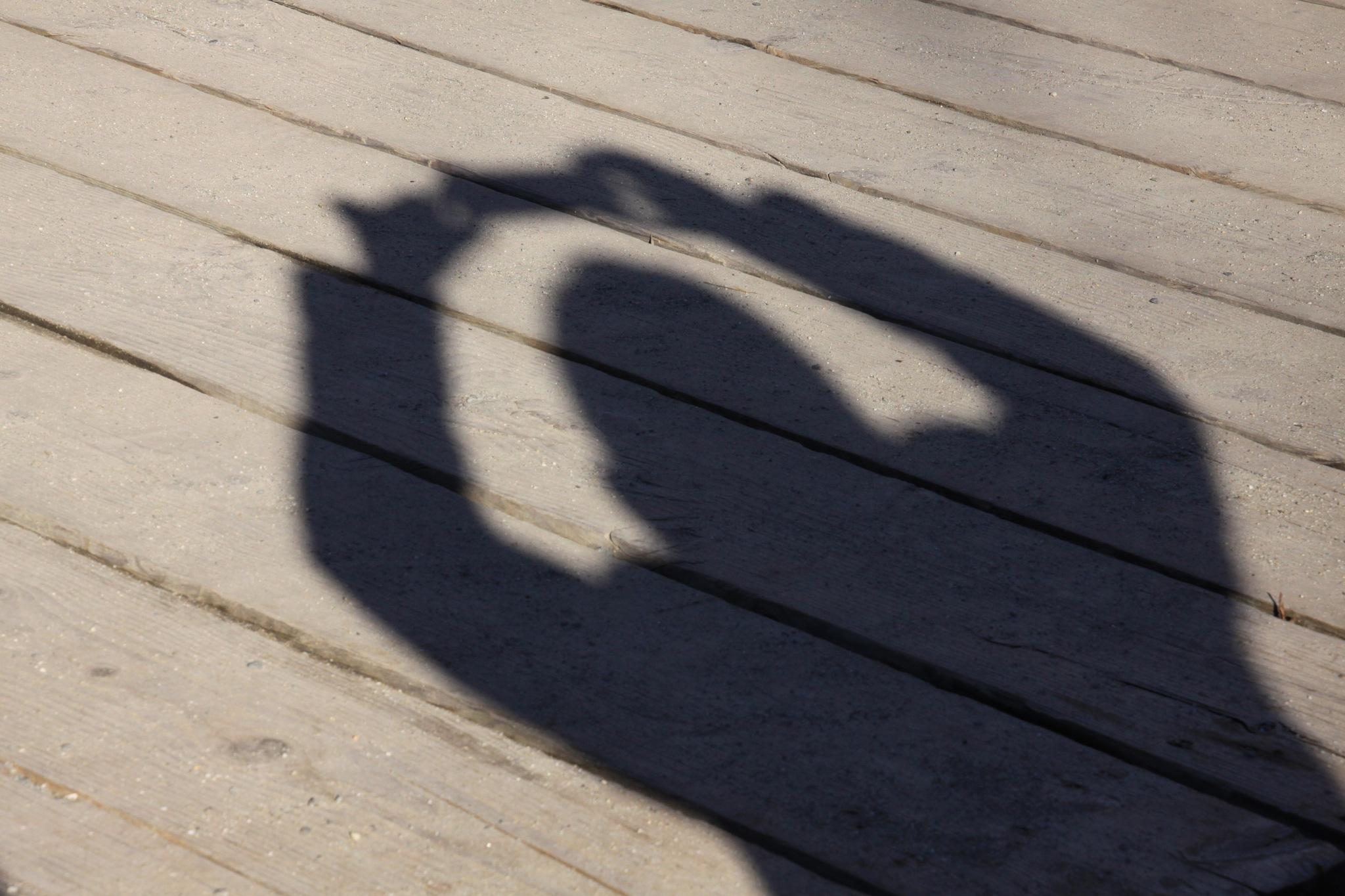 Shadow  by Massimo Capri