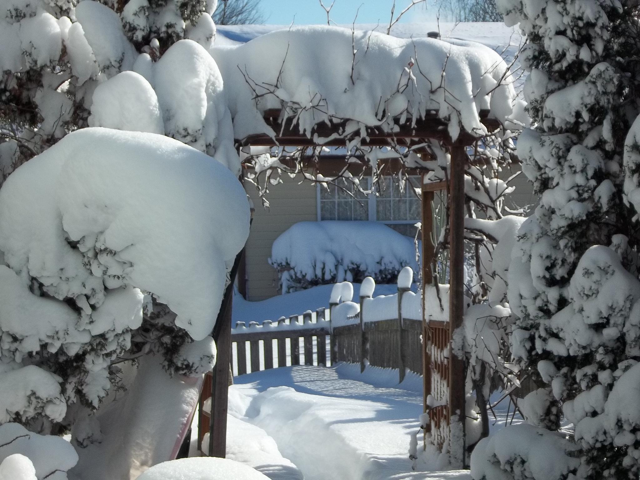 Doorway to Winter Wonderland by lbrescher