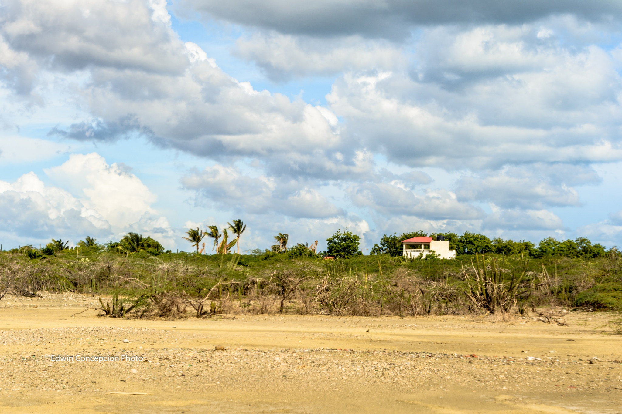 Little caribbean home by Edwin Concepción