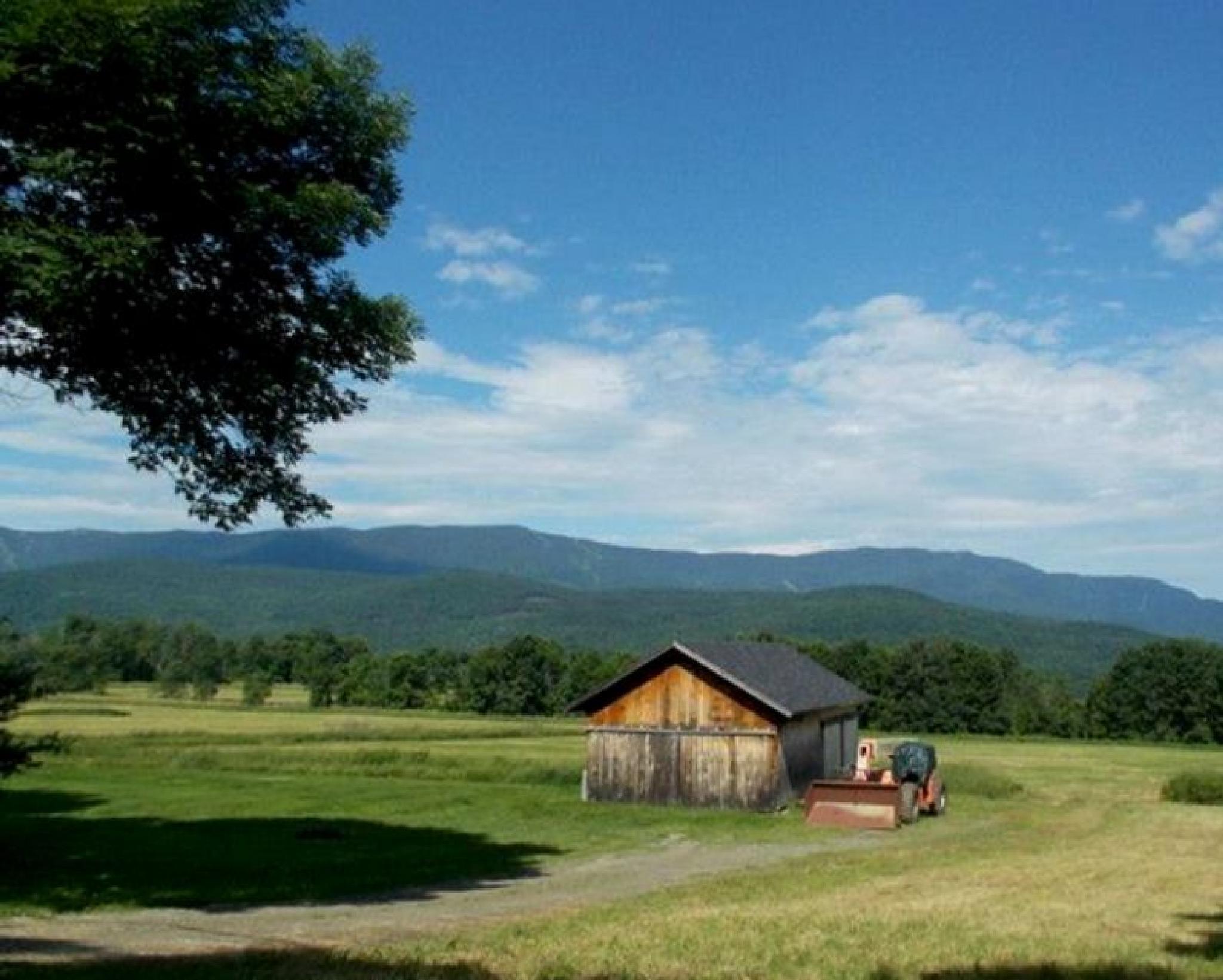 Vermont farm by tanzicakes