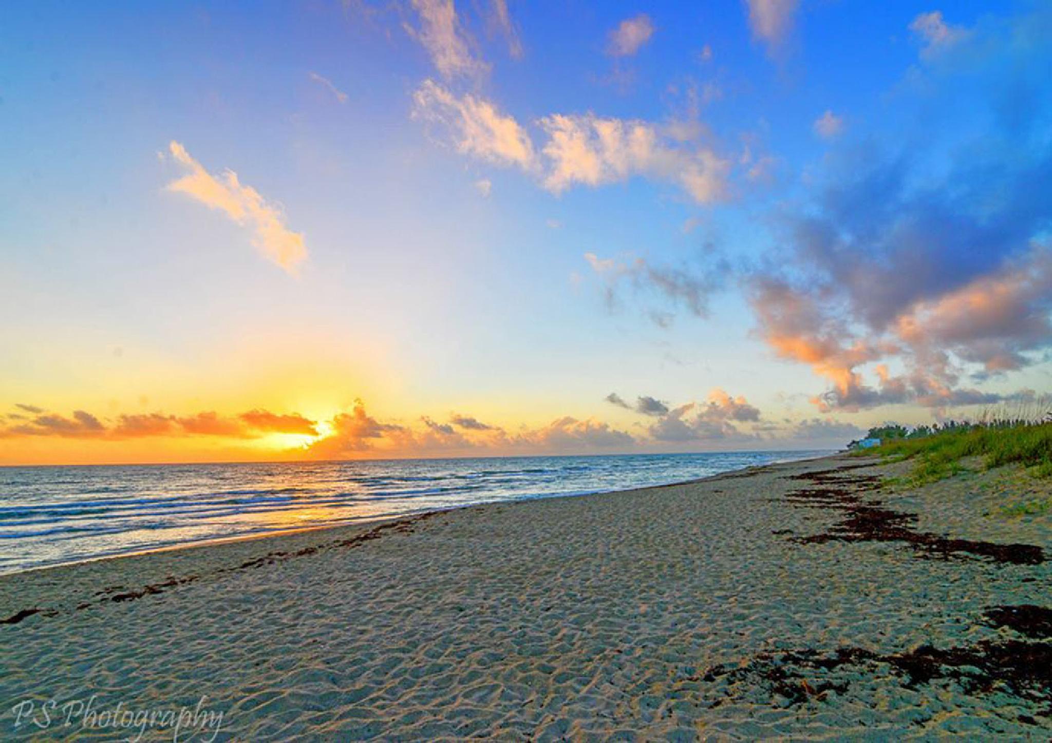 Hobe Sound Wildlife Preserve sunrise by pamsheedy