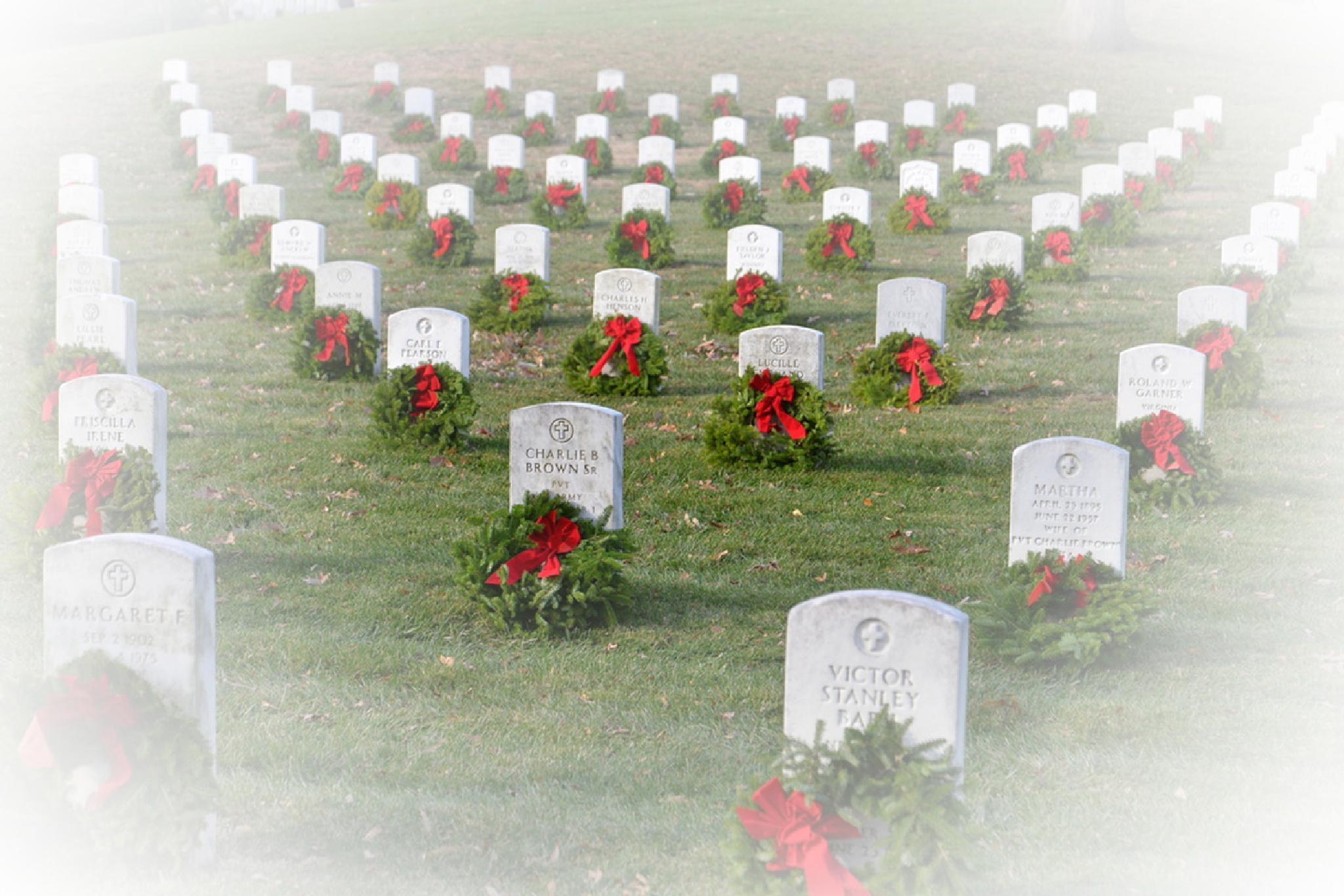 Arlington National Cemetery by pamsheedy