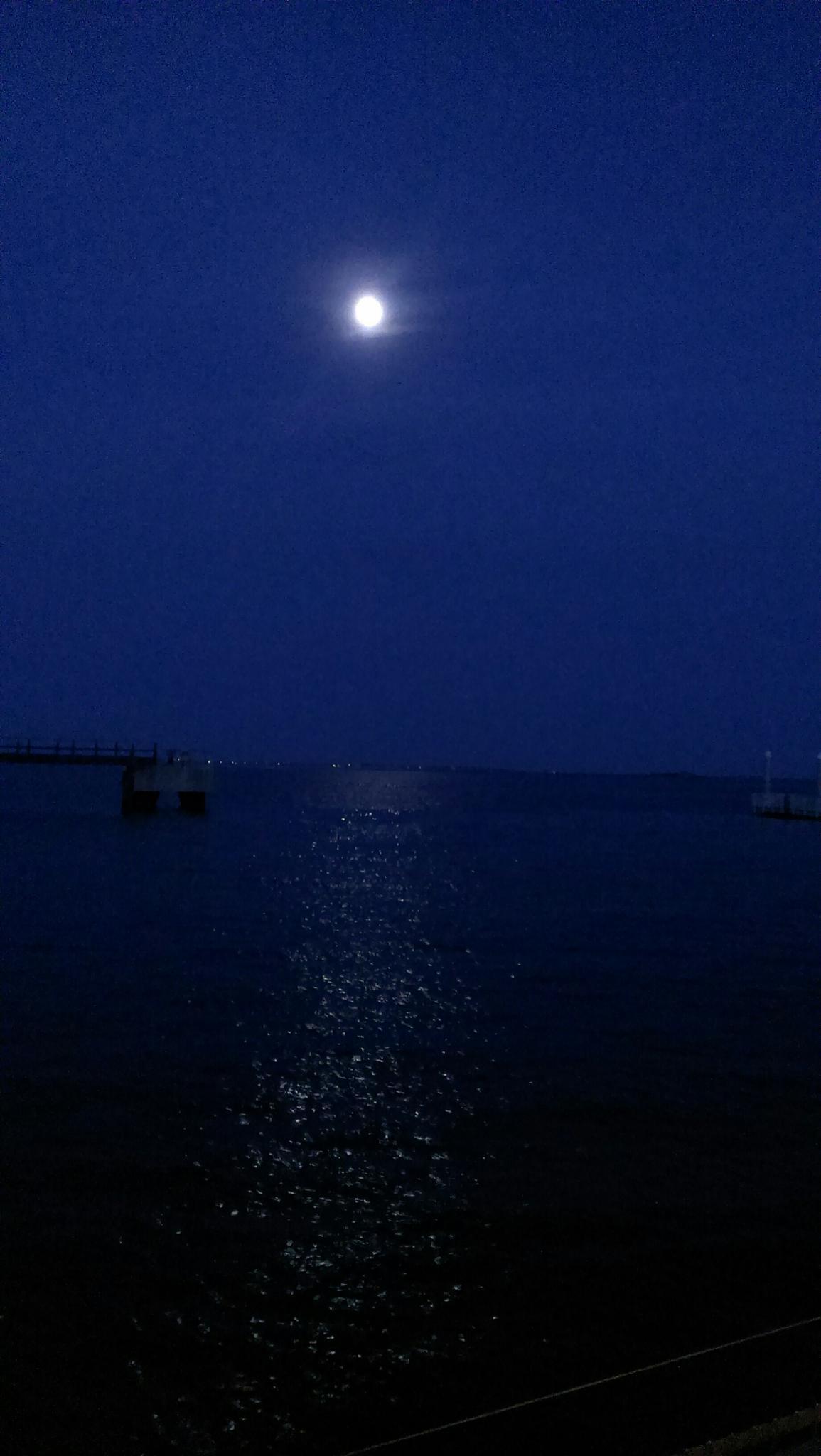 Moon  by mayramar61