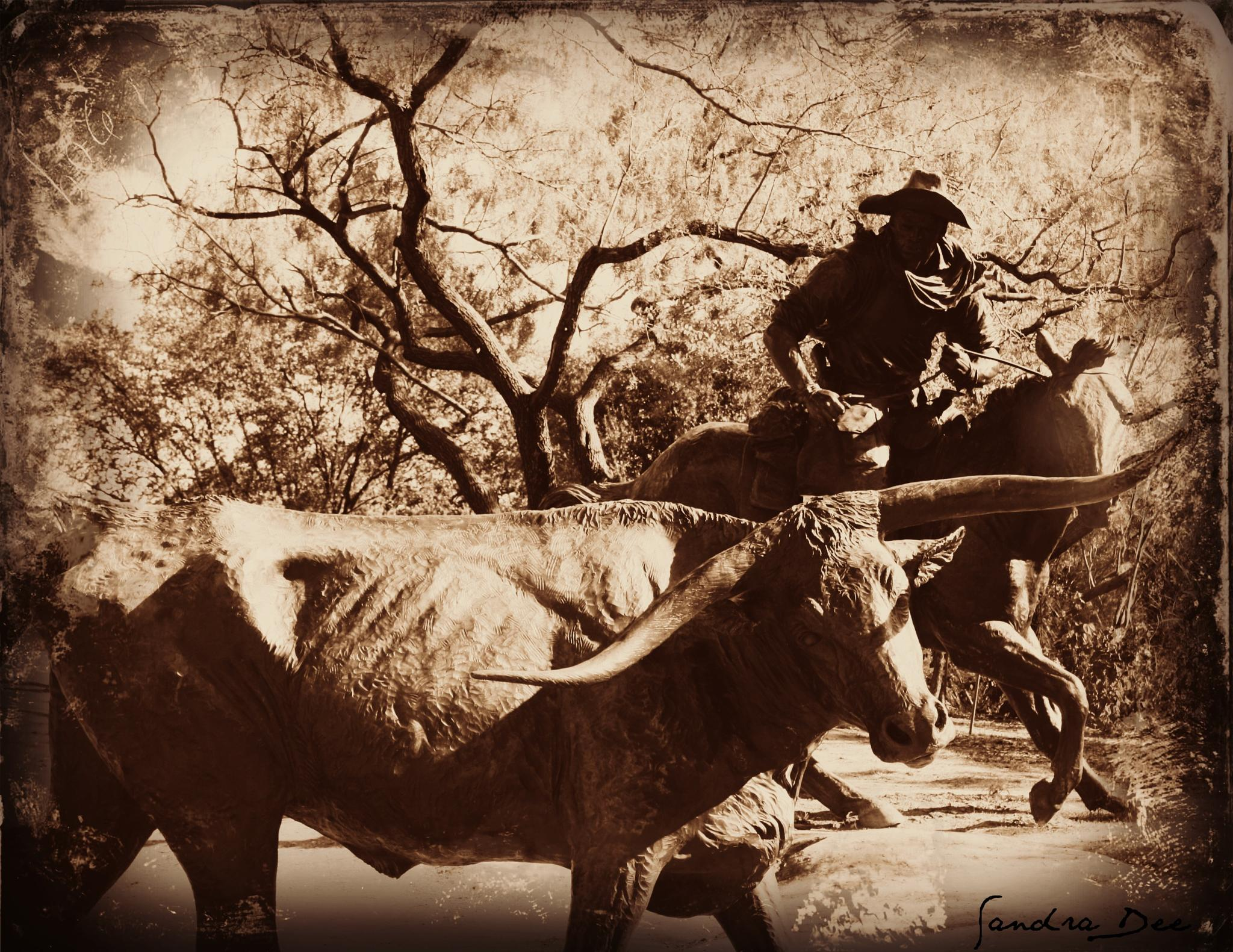 Pioneer Plaza Cattle Drive 2 by sandra.sherman.7334