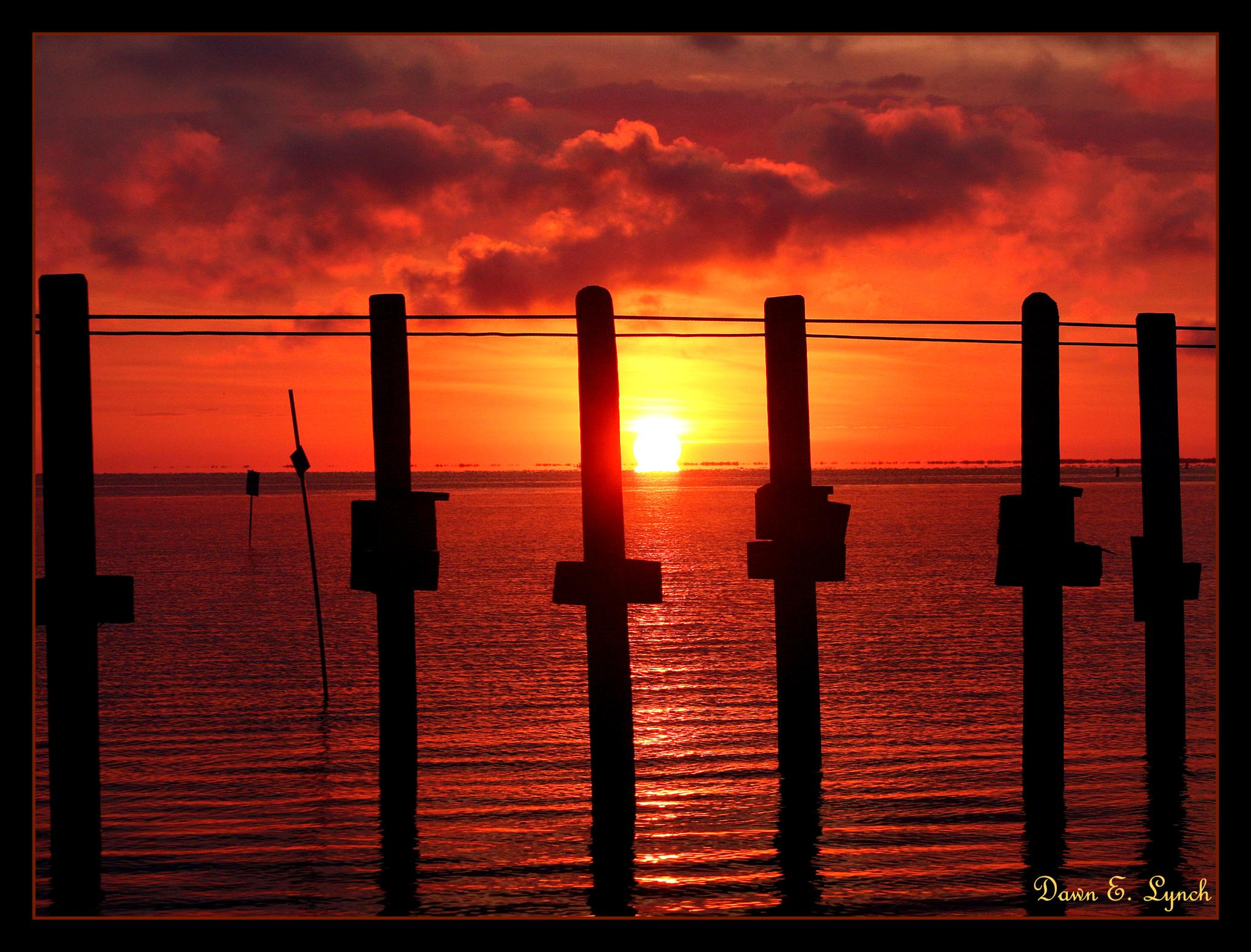 Between The Lines by dawn.breslinlynch