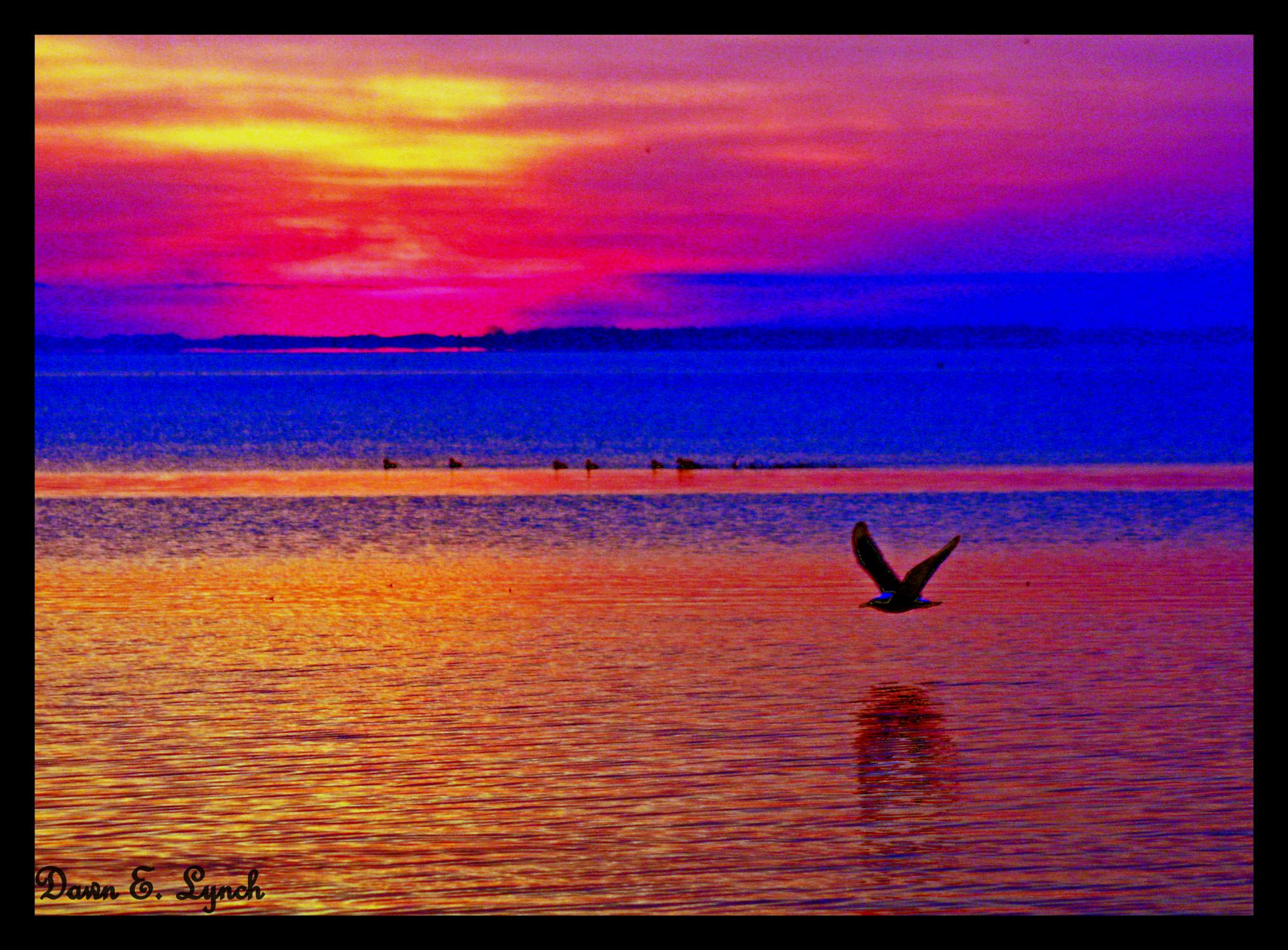 Untitled by dawn.breslinlynch