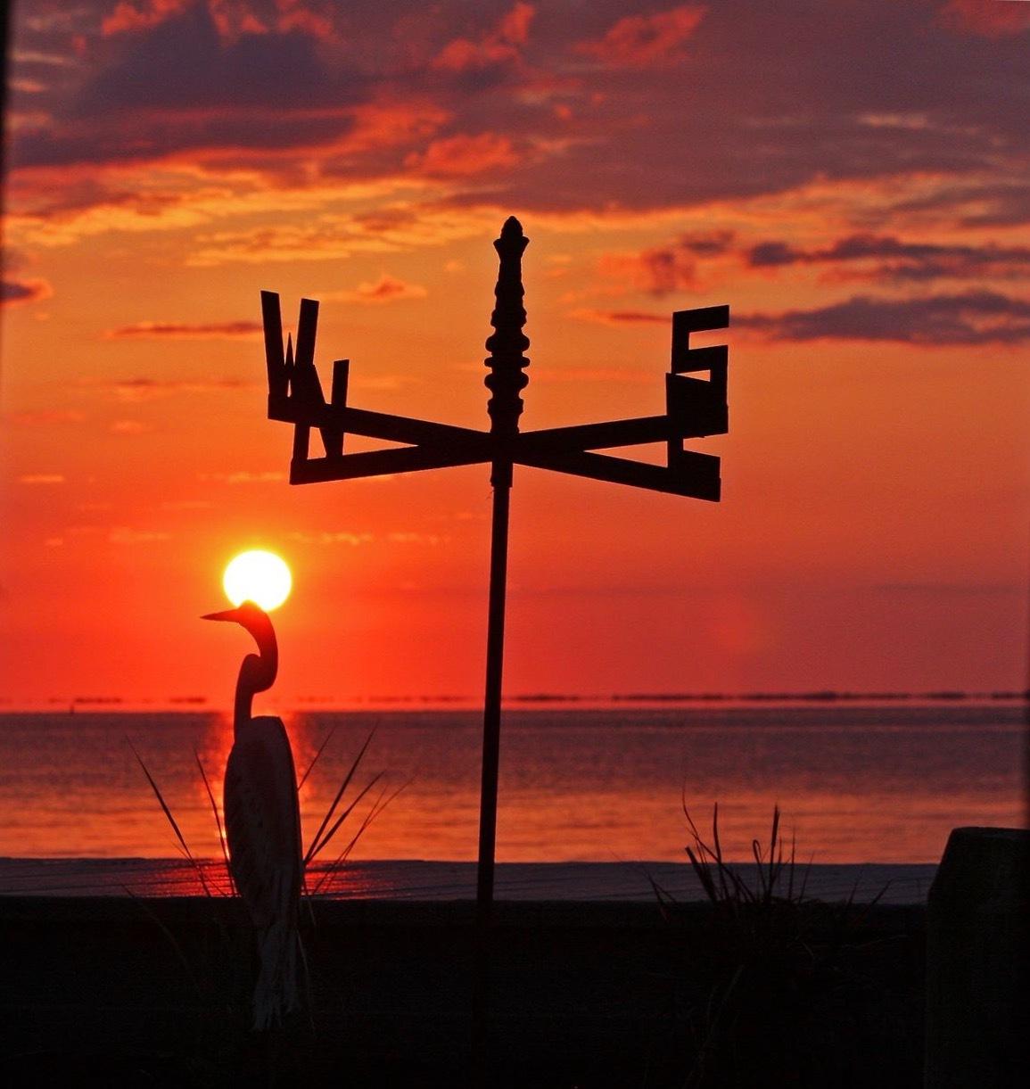 Summer's End by dawn.breslinlynch