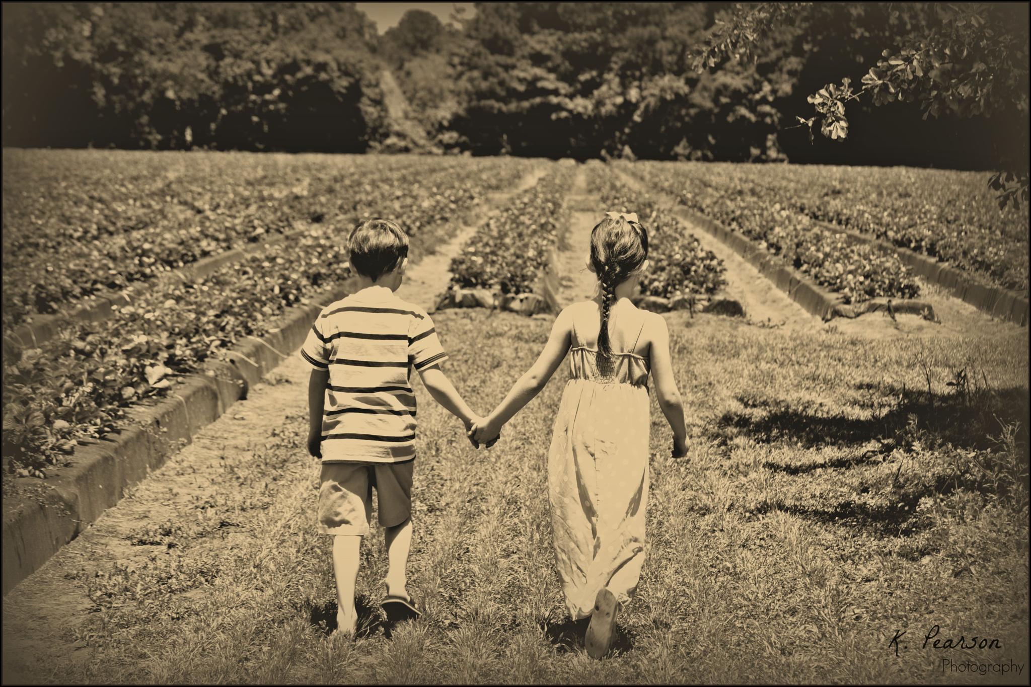 Strawberry Fields Forever by karen.pearson.184