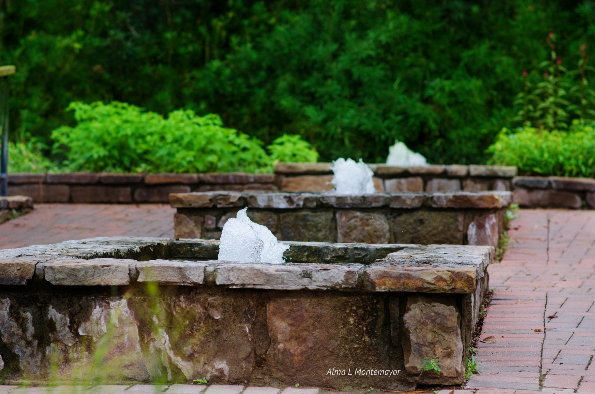 Water fountains by Alma