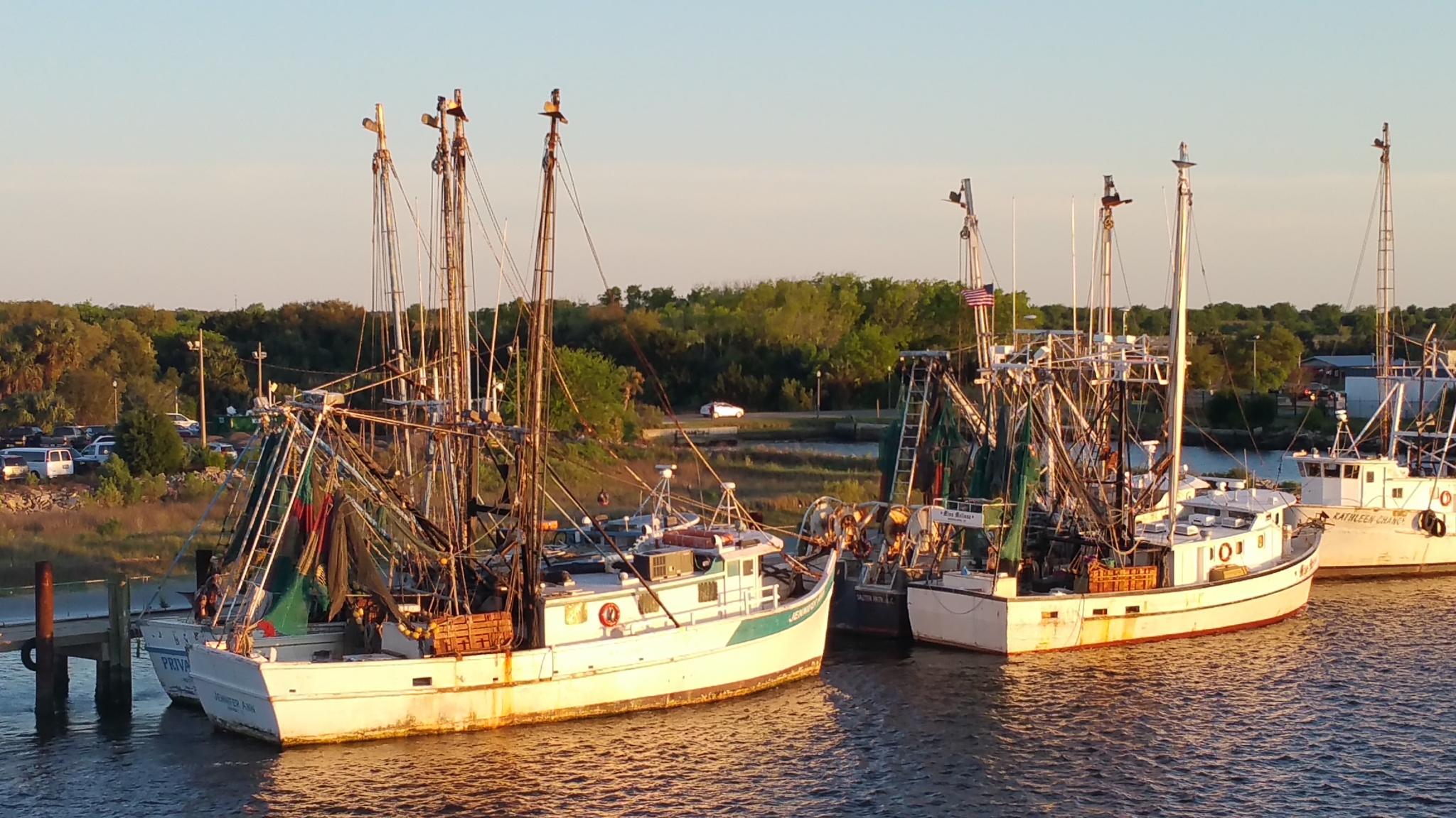 Boats at Mayport Village  by aida.carpena