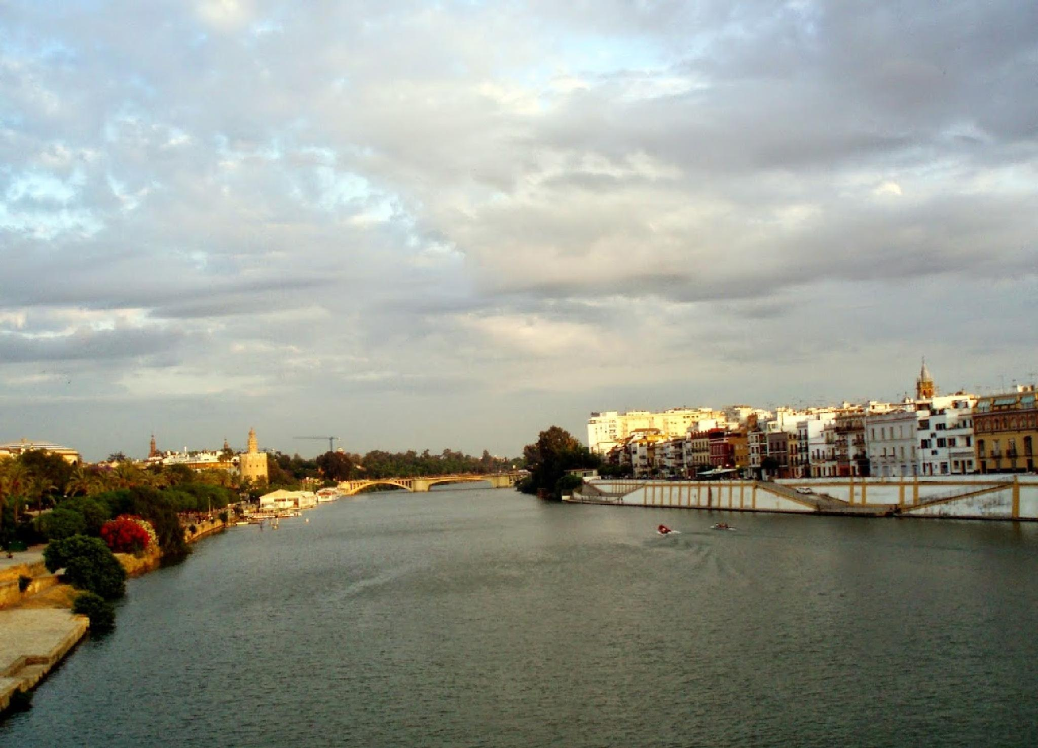 River view from Triana Bridge  by aida.carpena