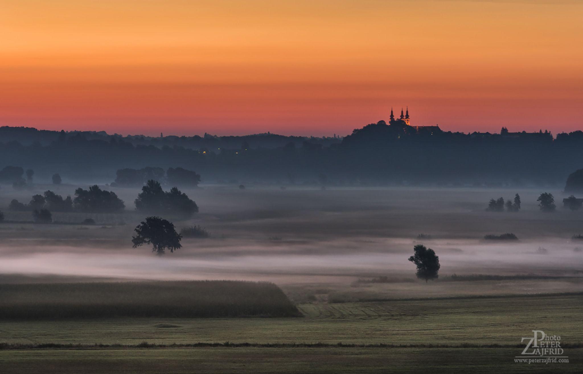 Enter the dawn by Peter Zajfrid