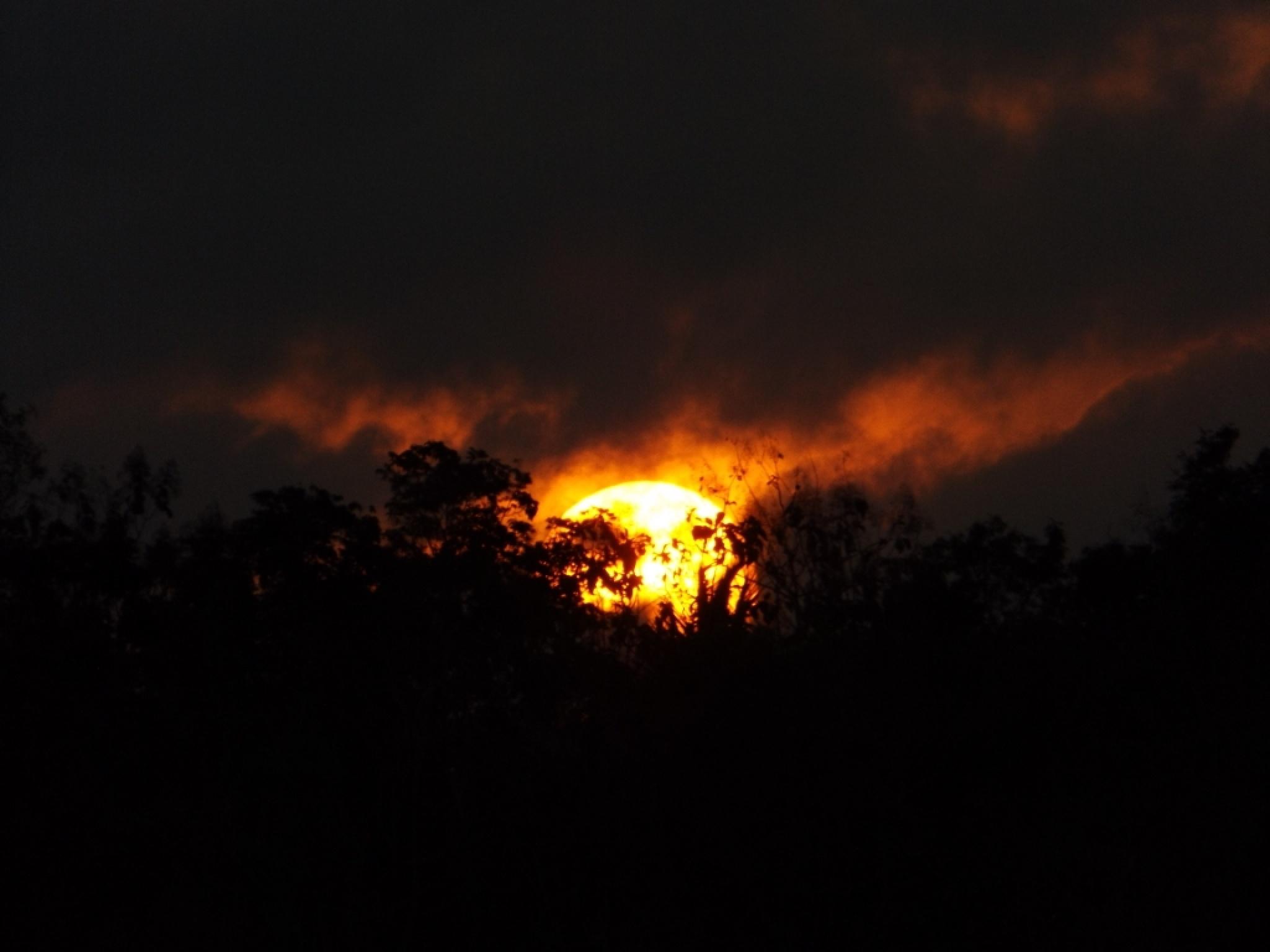 sunset by ryutaro