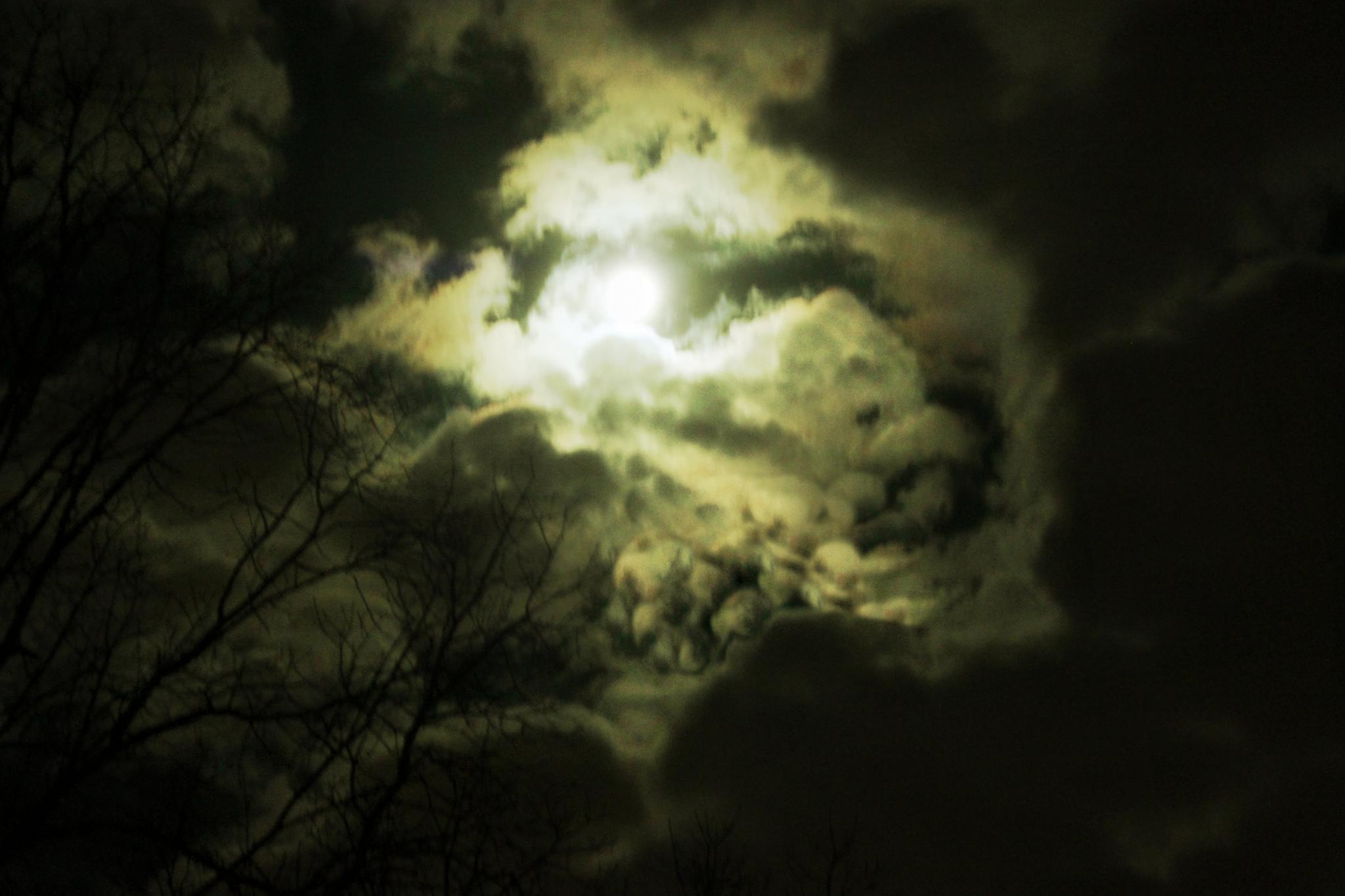 Moon  by Catjar