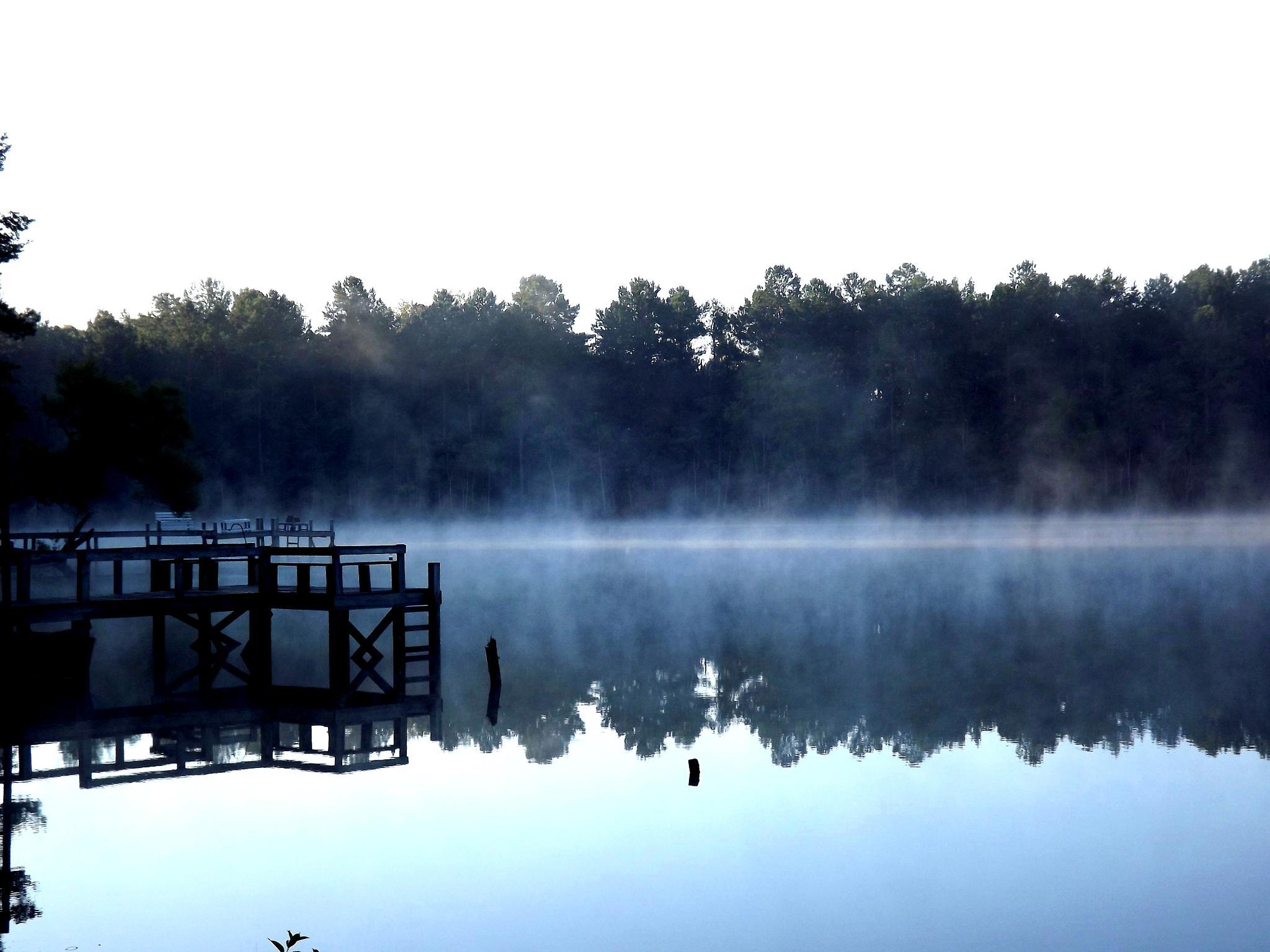 Wayside Alabama  by reesegsd