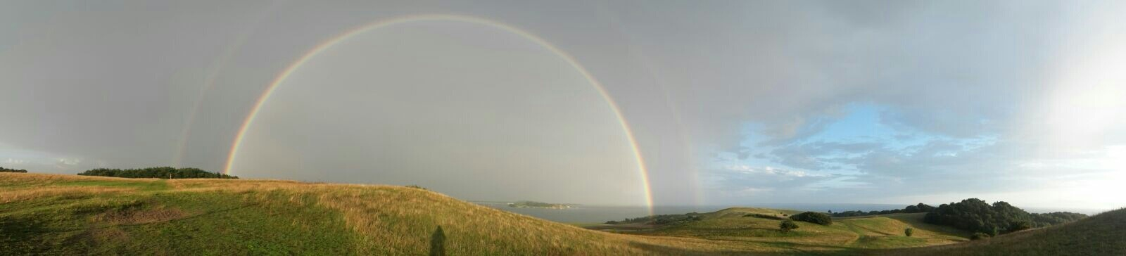 Rainbow  by Susanne Schulze