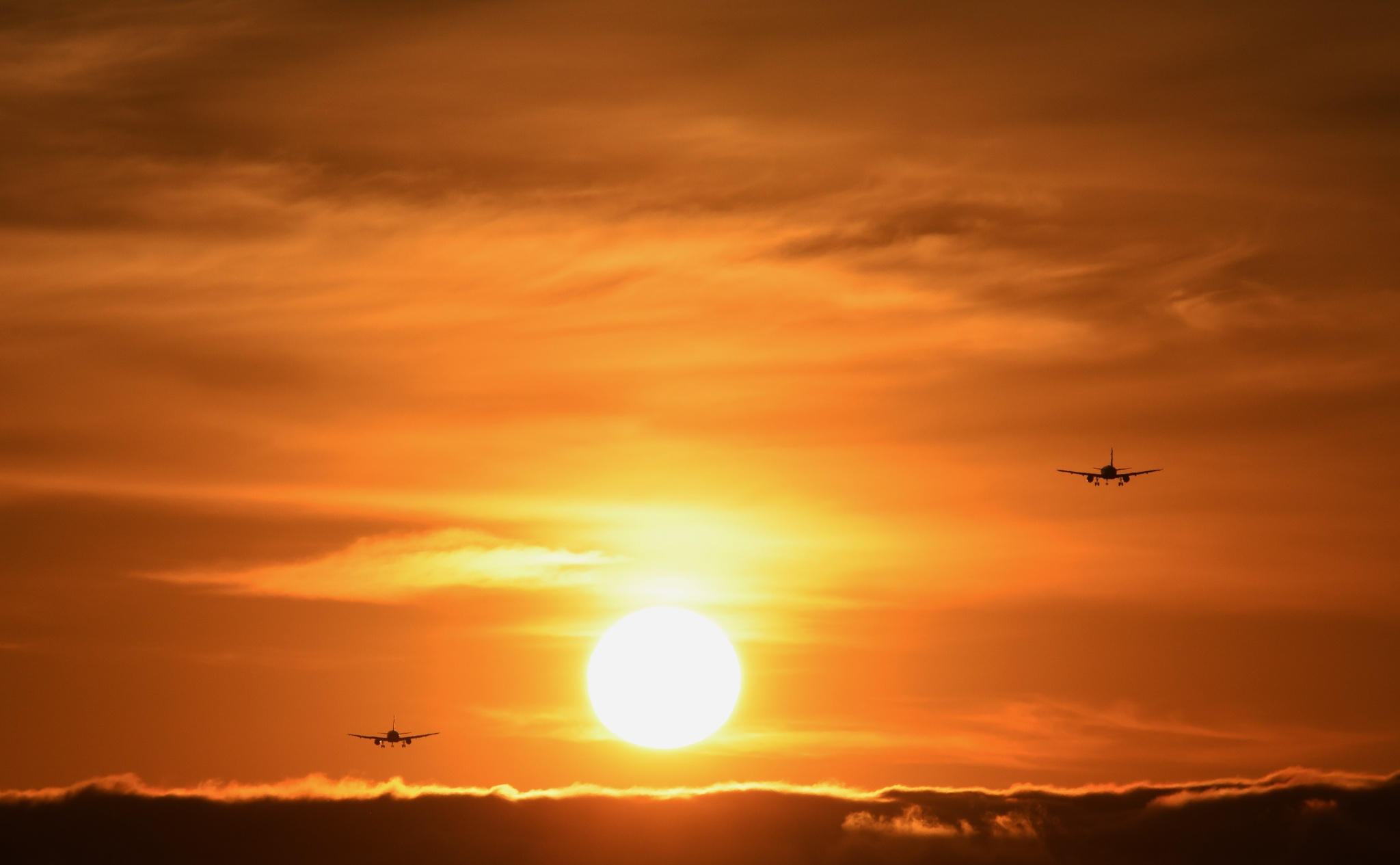 Photo in Landscape #sunset #foster city #bay trail #sfo #flights #landing
