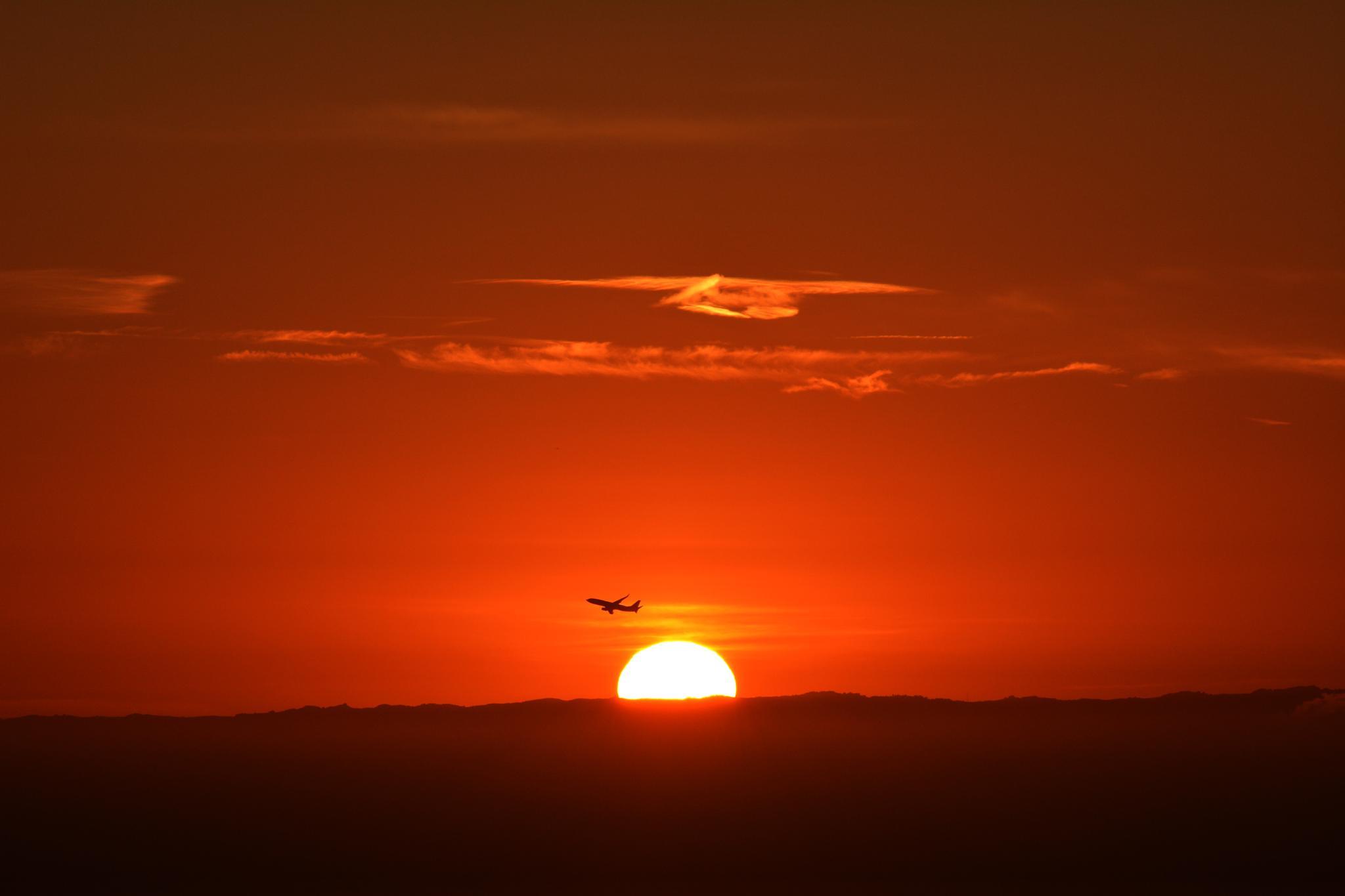Photo in Nature #sunrise #dawn #flight