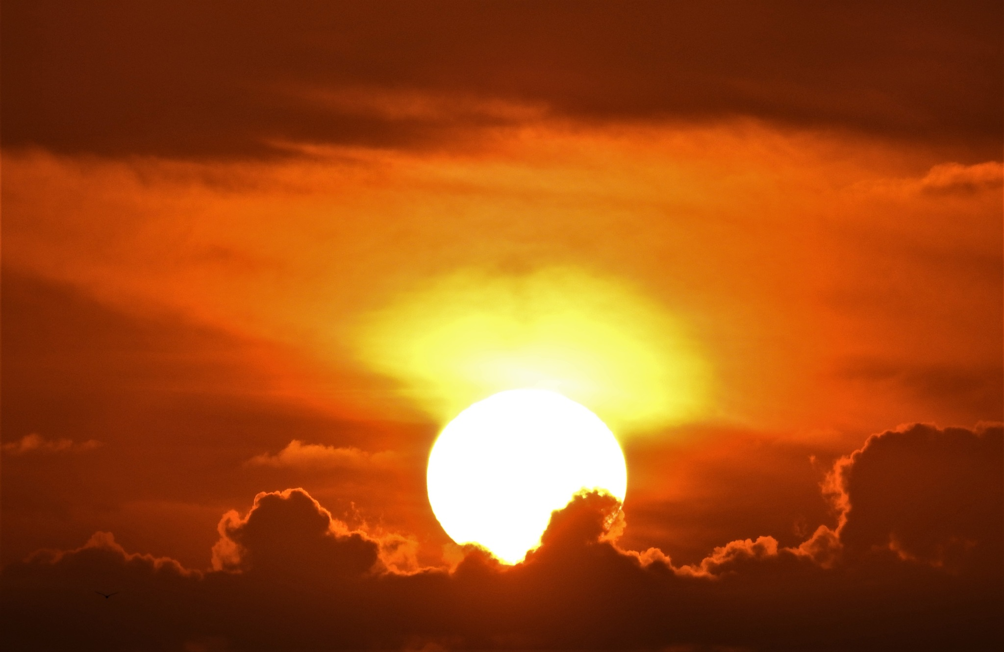 Sundown by Gerard Francis Corbett