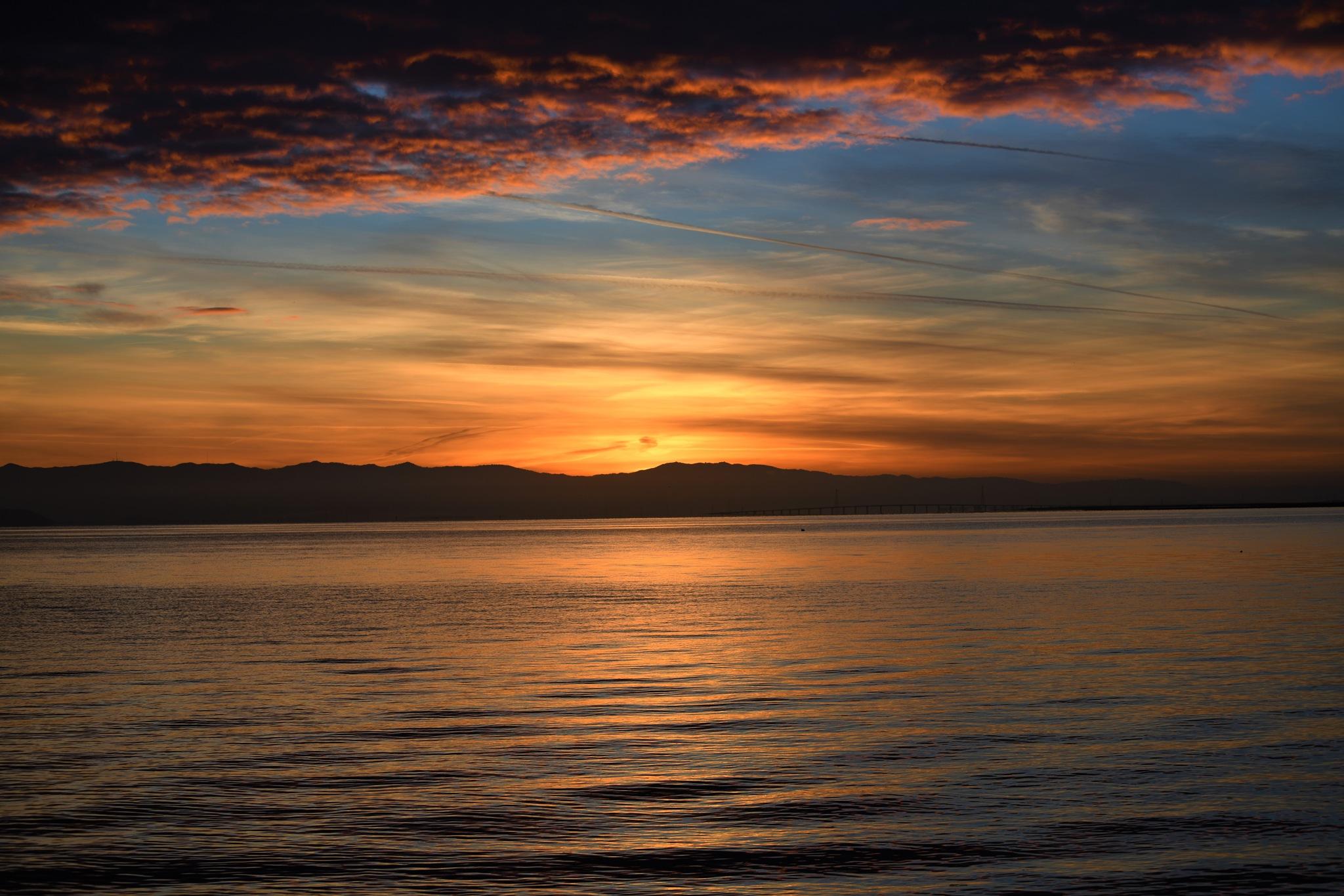 Dawn  by Gerard Francis Corbett