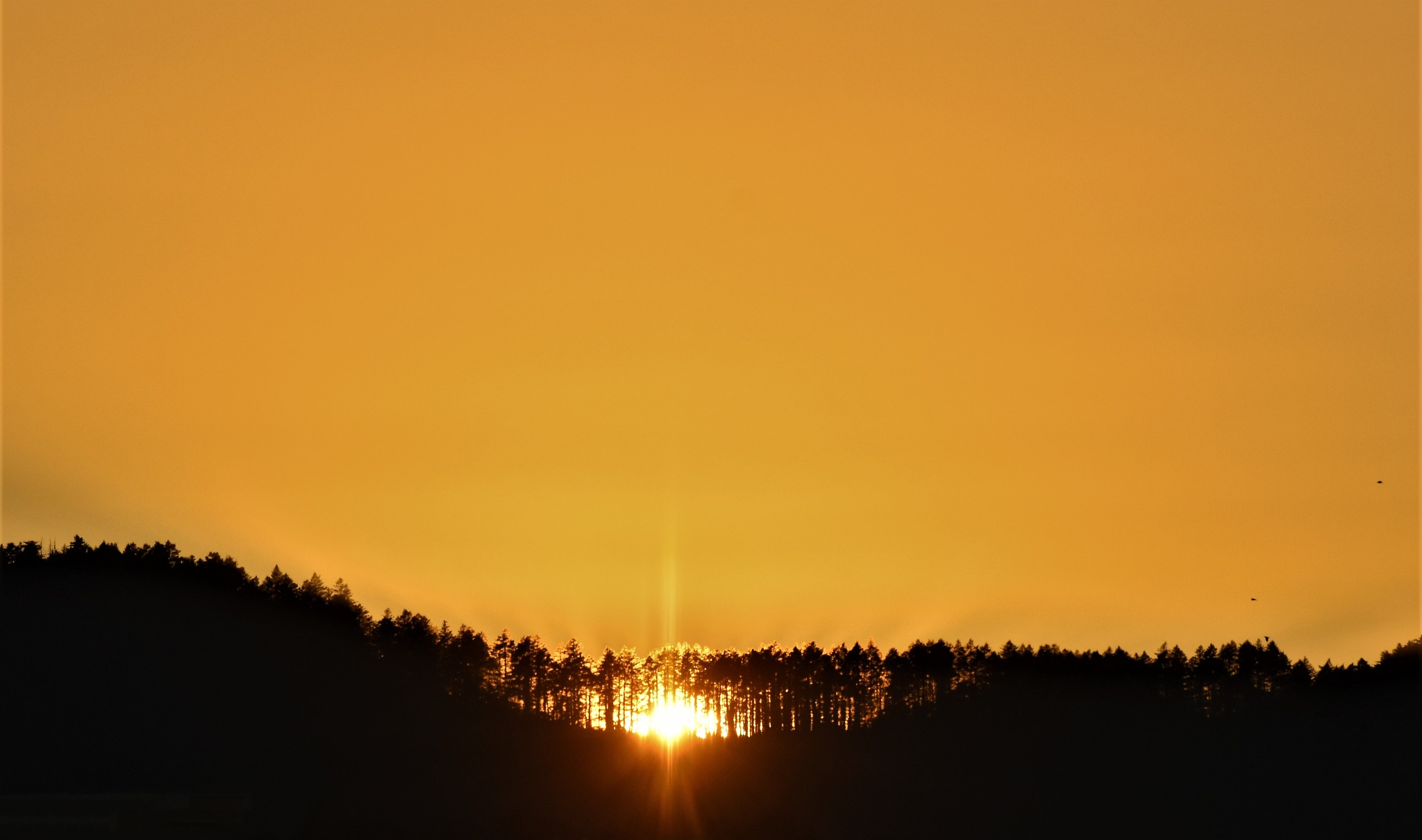 Sunset, Western Ridge by Gerard Francis Corbett
