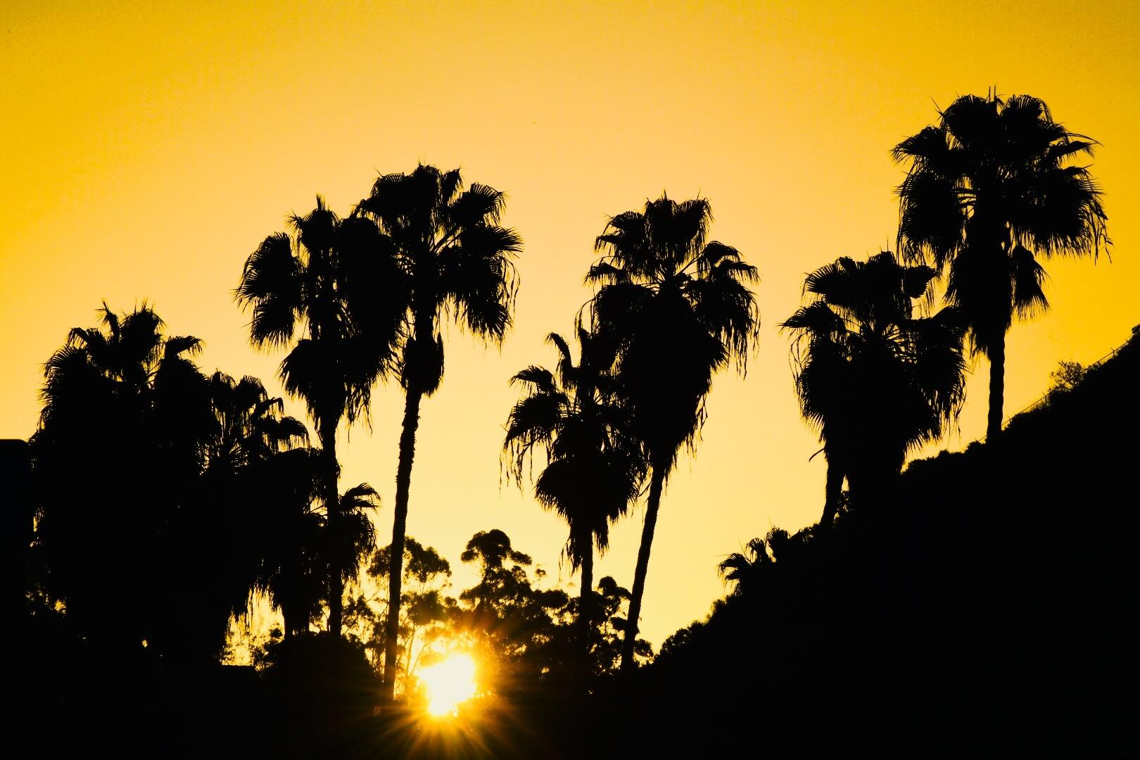 Sunrise by Gerard Francis Corbett