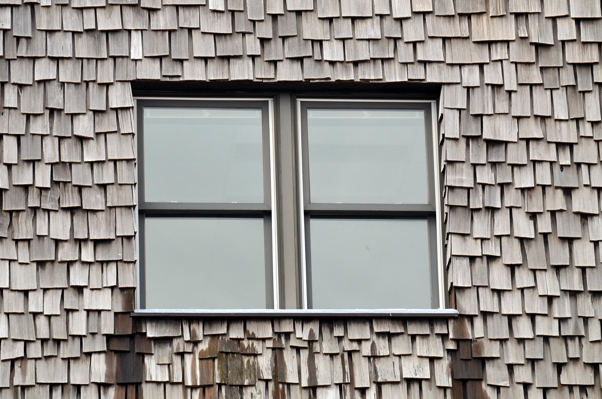Window by lazy.human