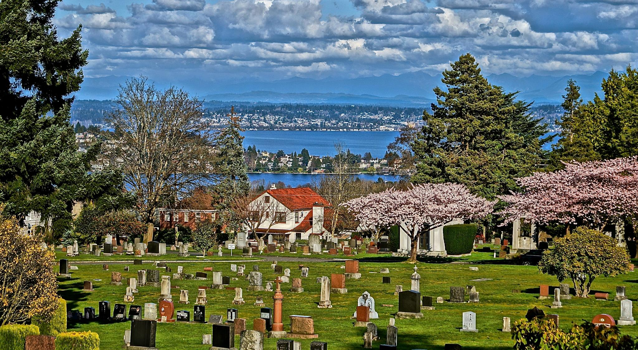 VIEW FROM CAPITOL HILL CEMETERY in SEATTLE ,WA by orhidea images