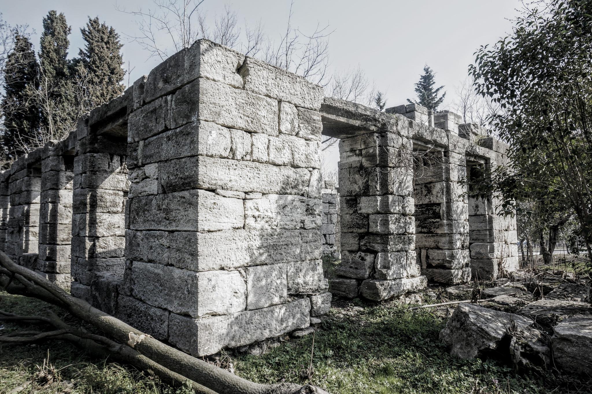 Alone by Yavuz Sevgi