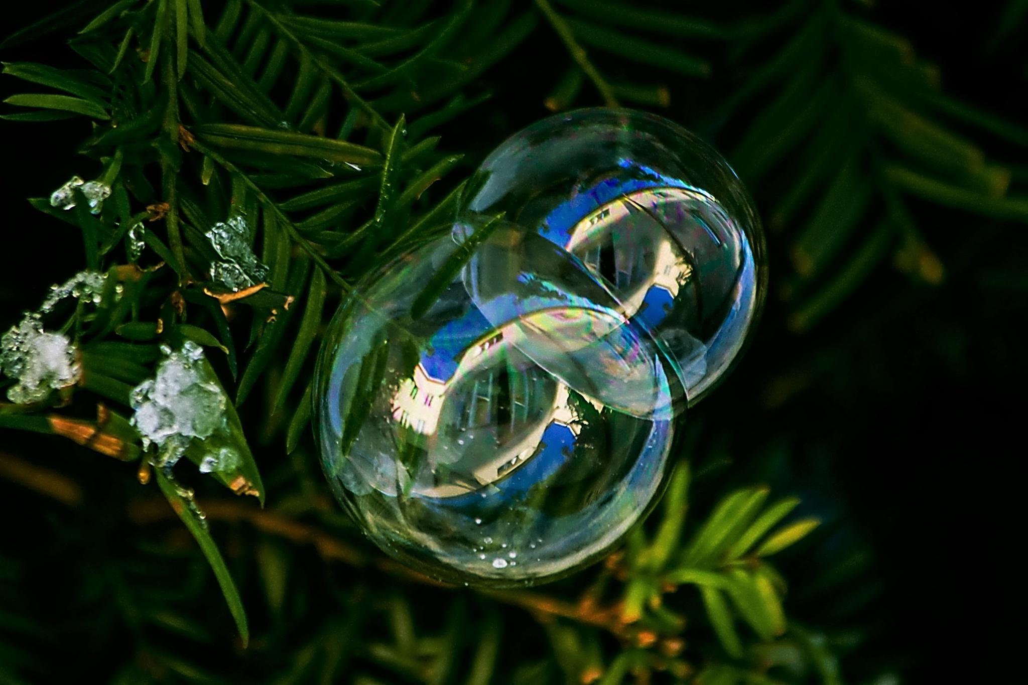 Bubble blower by surta