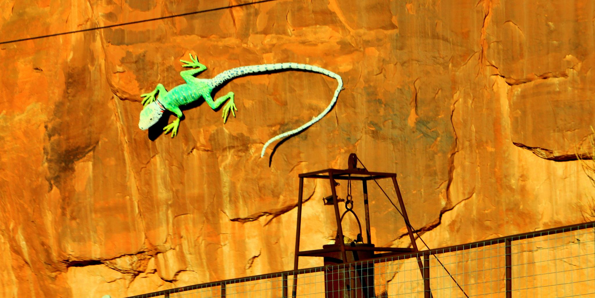 Lizard Art by JoHannah Boots Photography