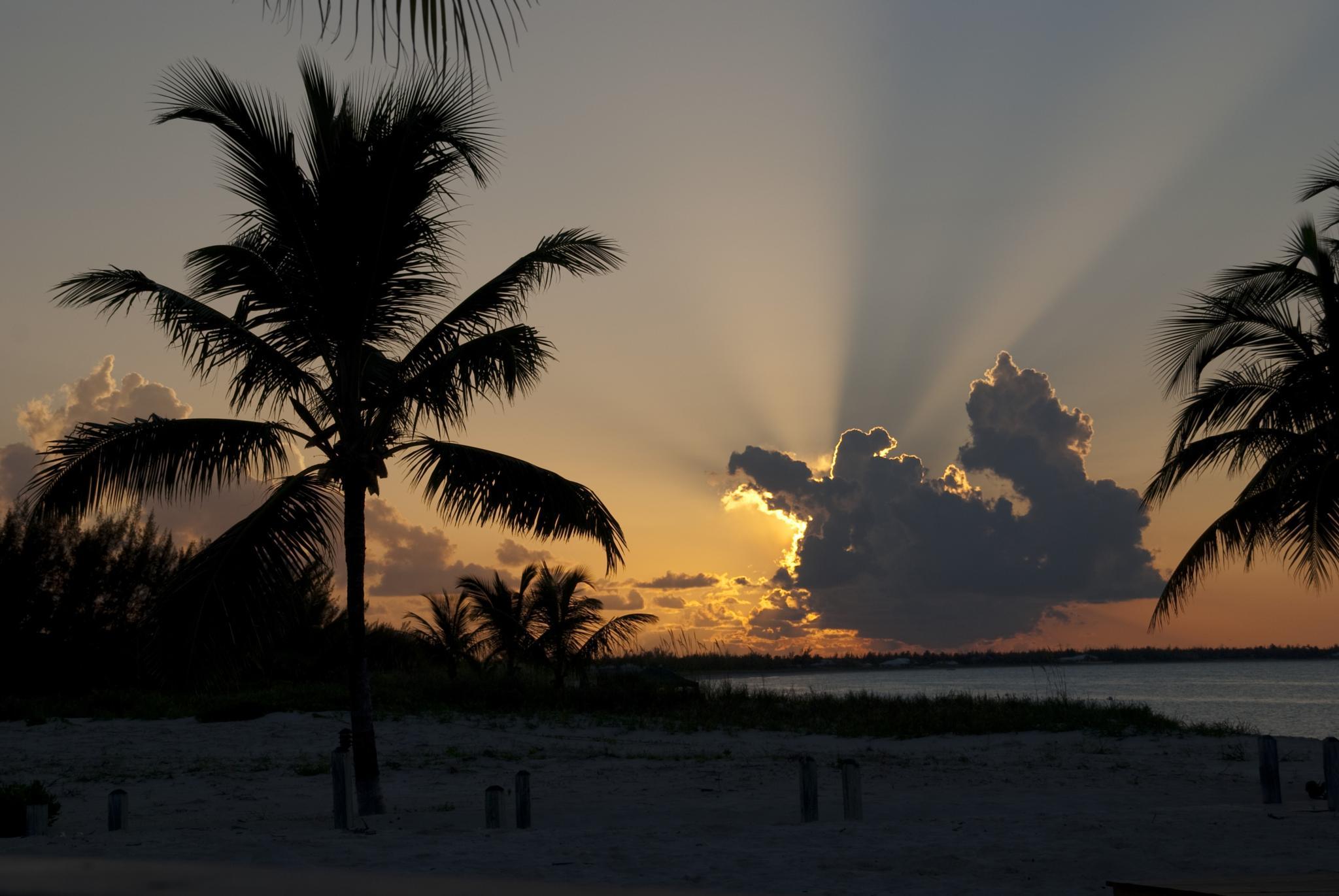 sunset rays by Linda Balon