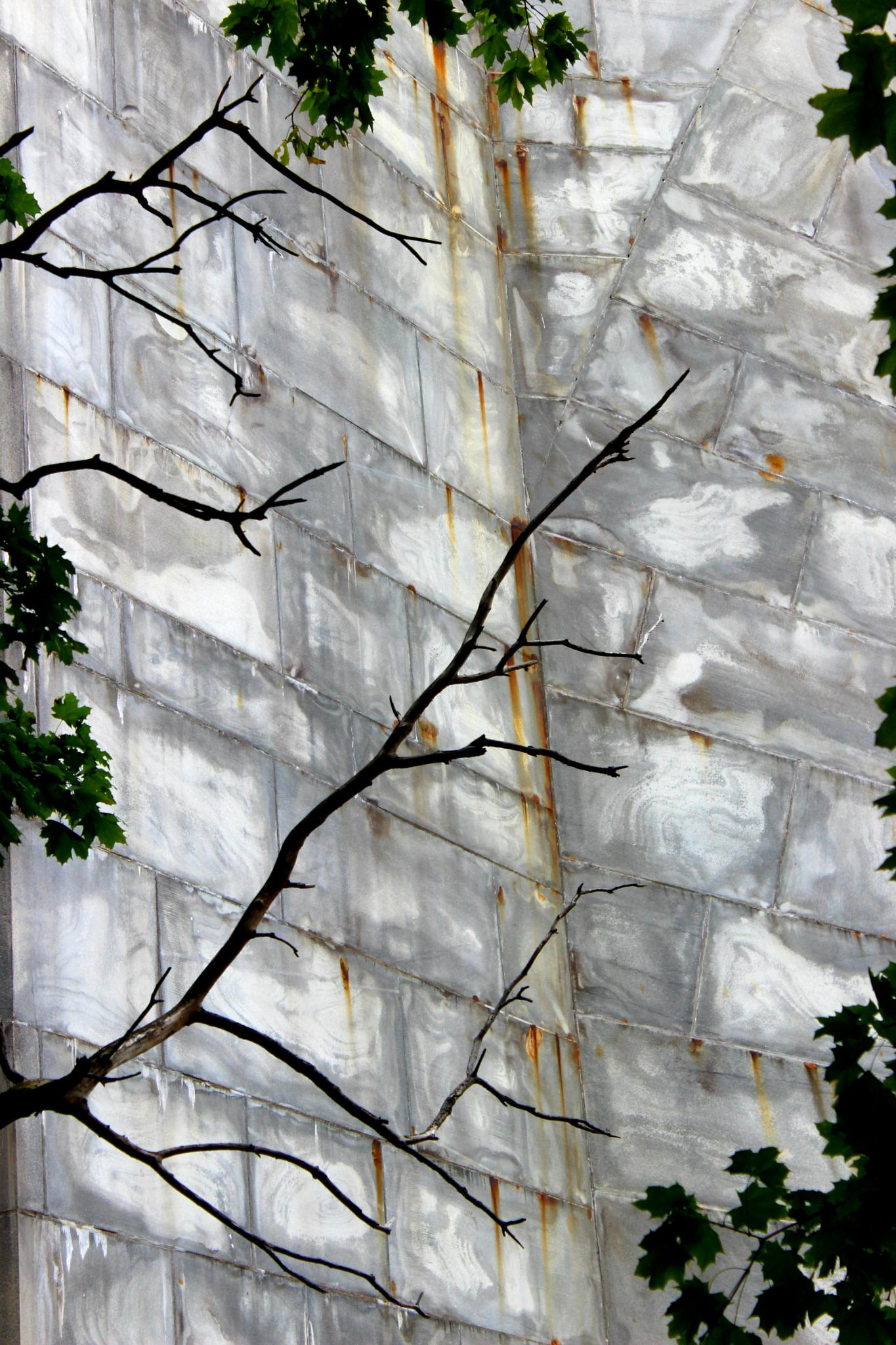 The Wall by lelhannon
