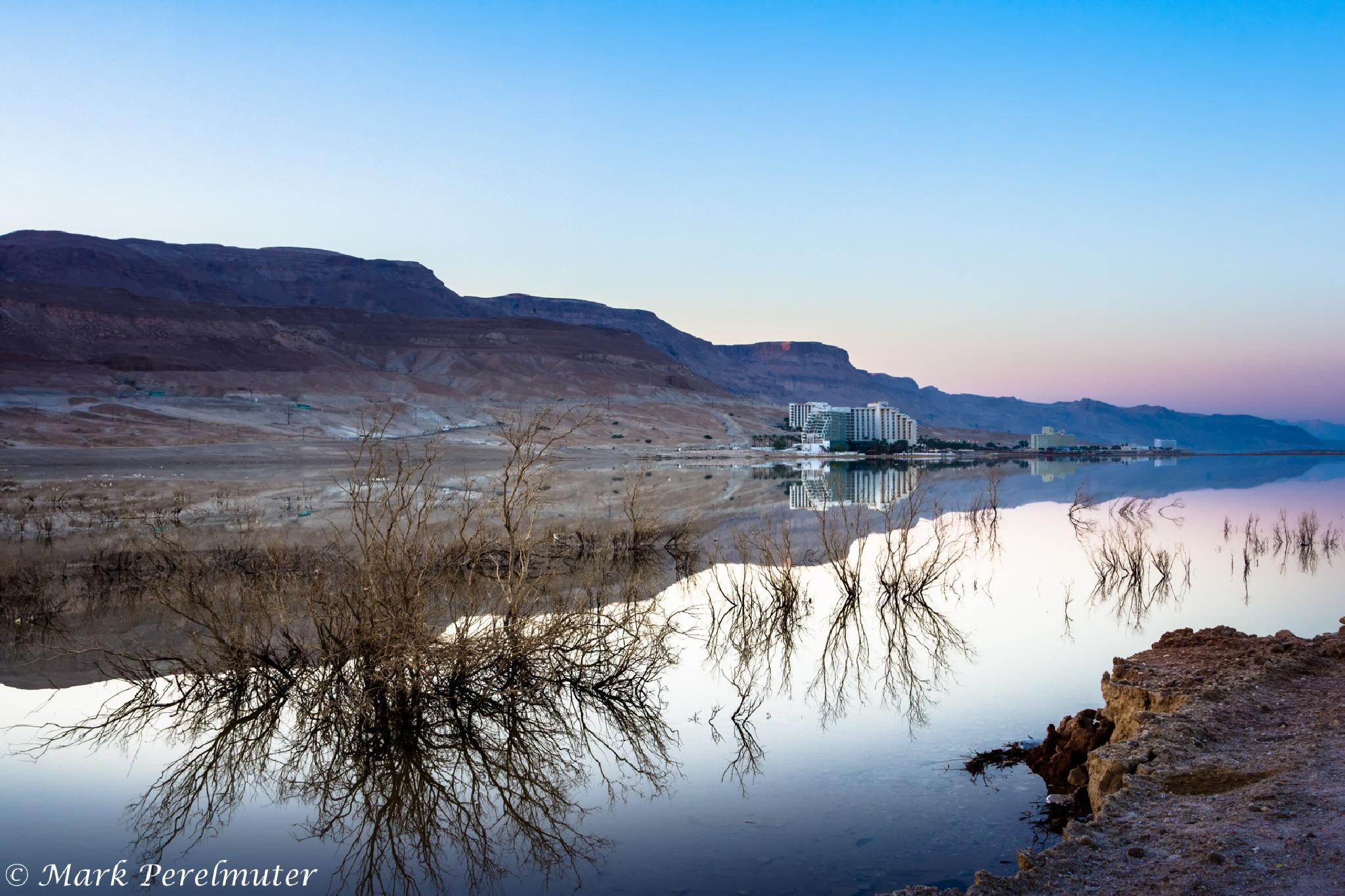 Dead reflection by Mark Perelmuter