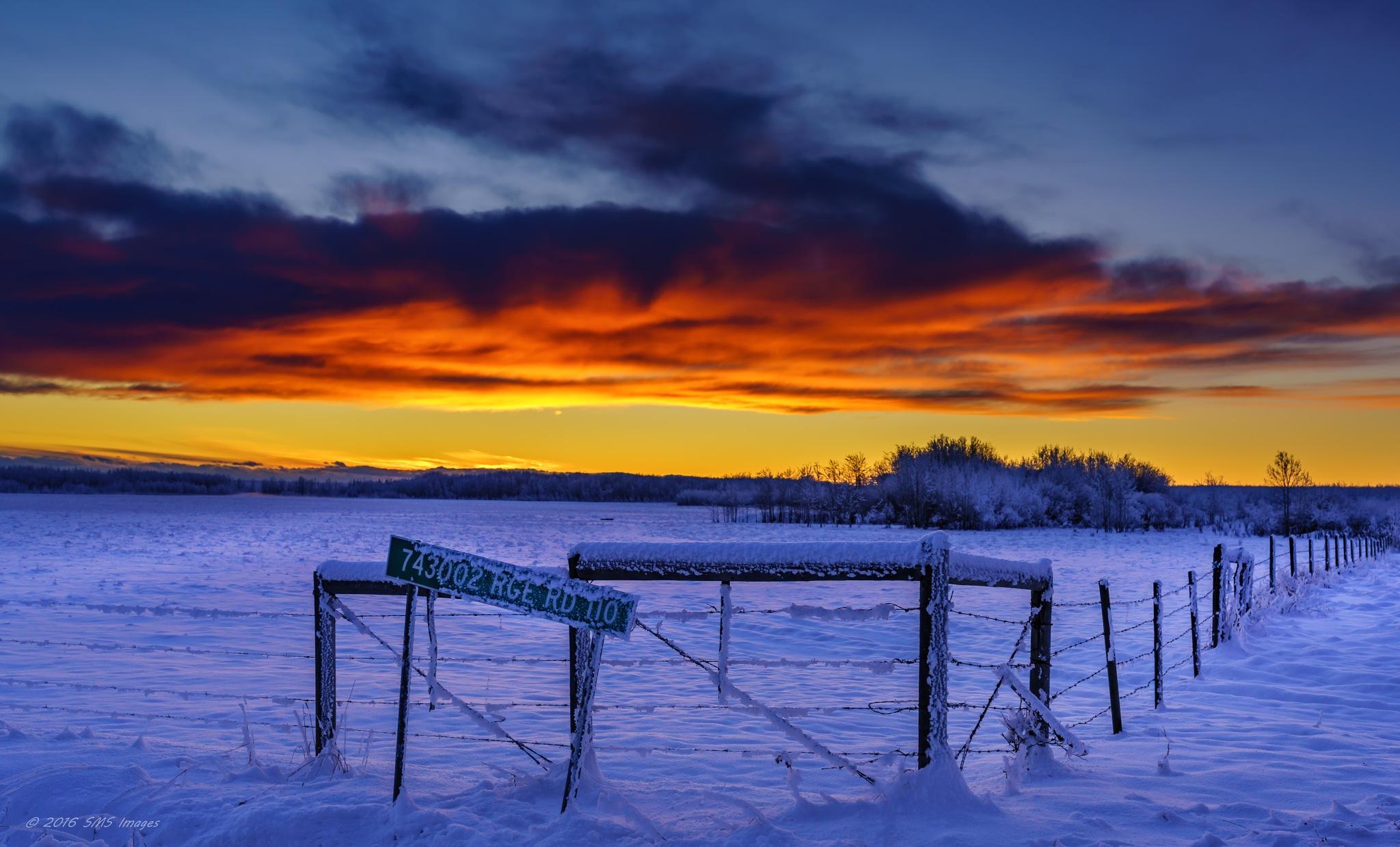 Winter's Colors by SteveMumert