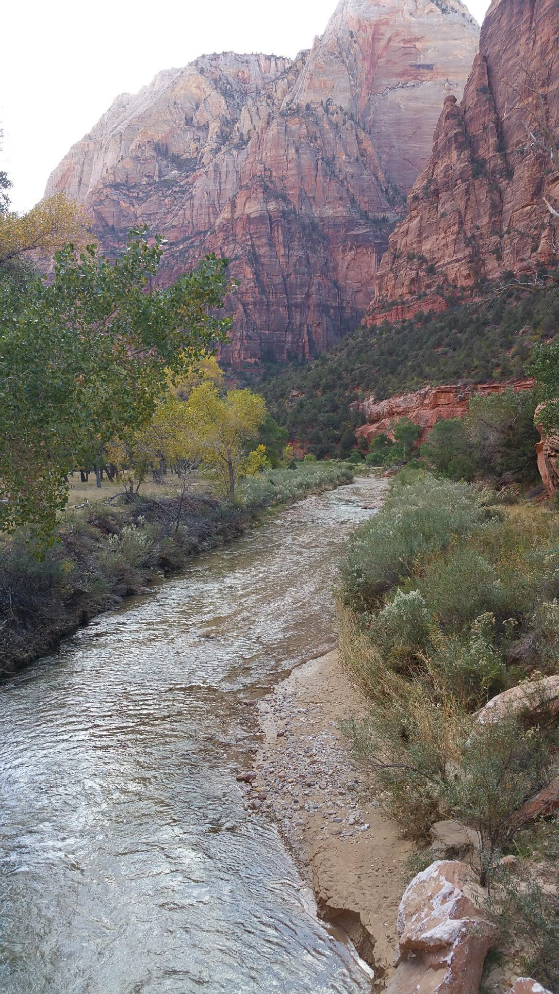 River at Zion by KellyDWidener