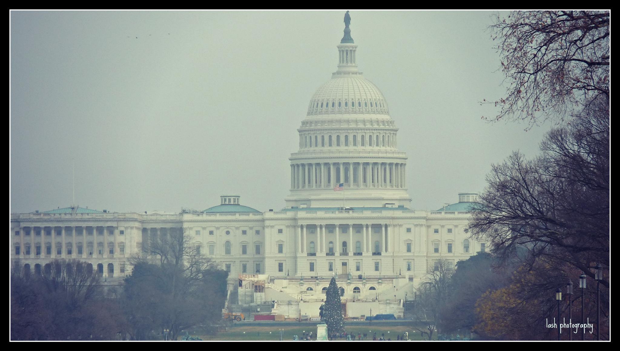 white house in December by laurabond.shinn