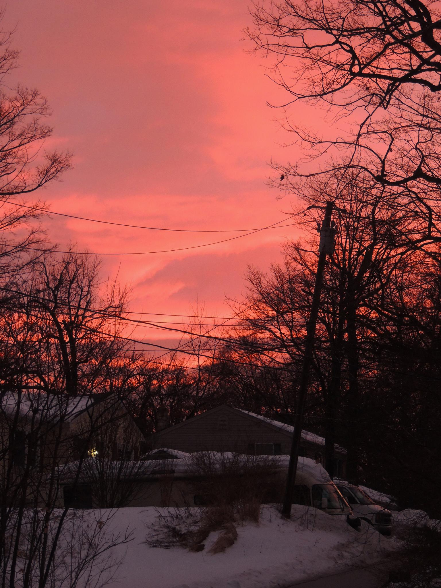 Pink skies by carol.capozzi.18