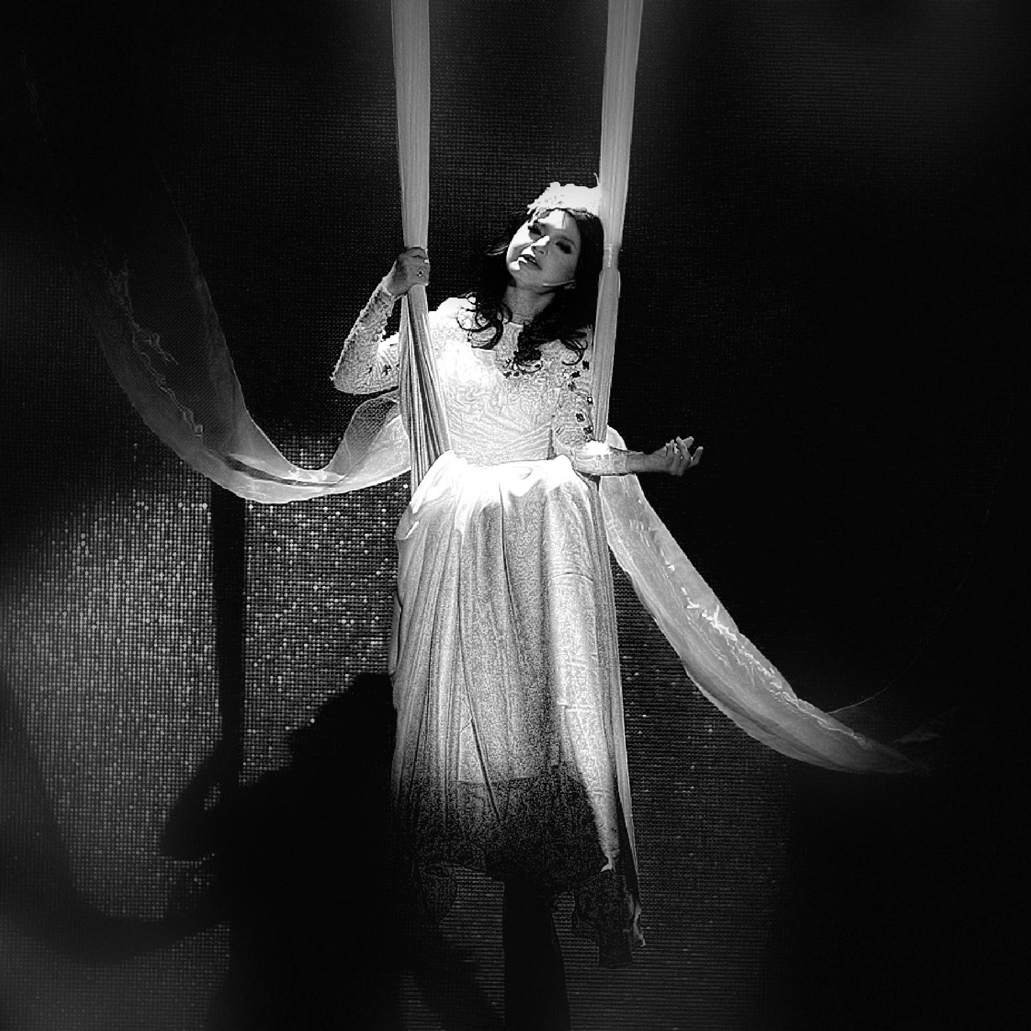 swinging by dianmao