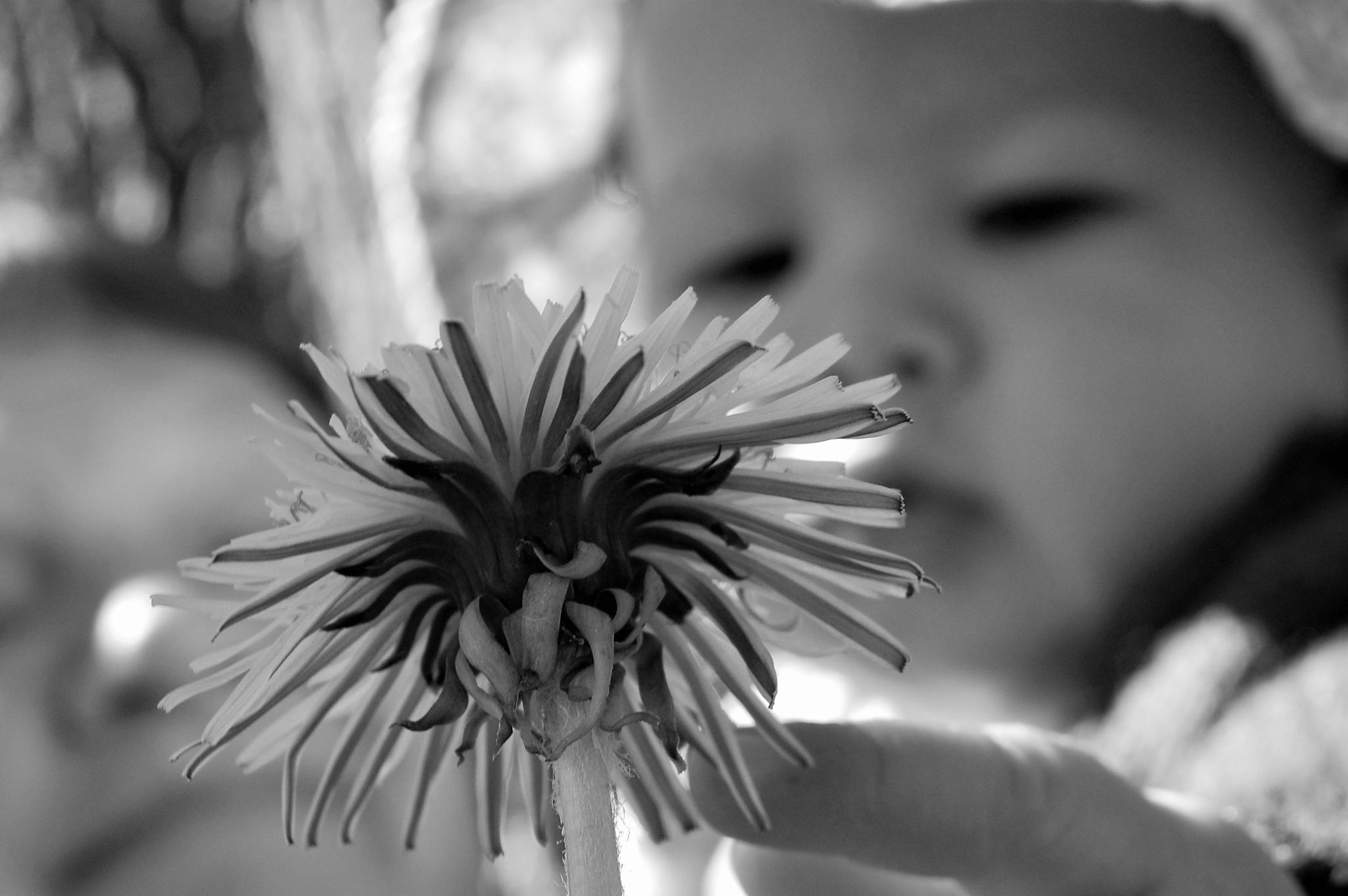 Untitled by lillemor.ekstrom ek