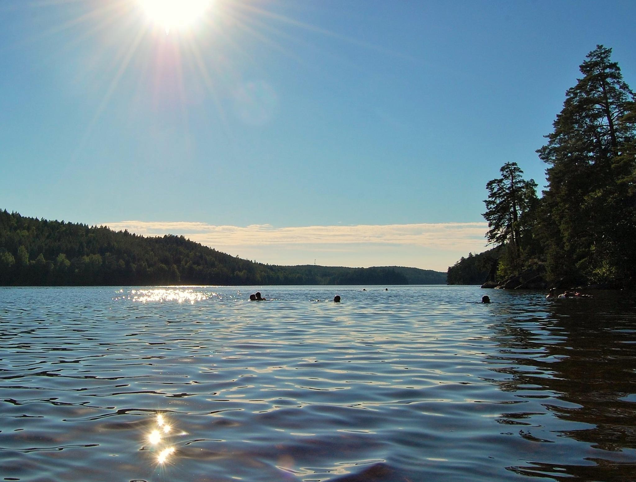 Swiming in the evening sun by lillemor.ekstrom ek