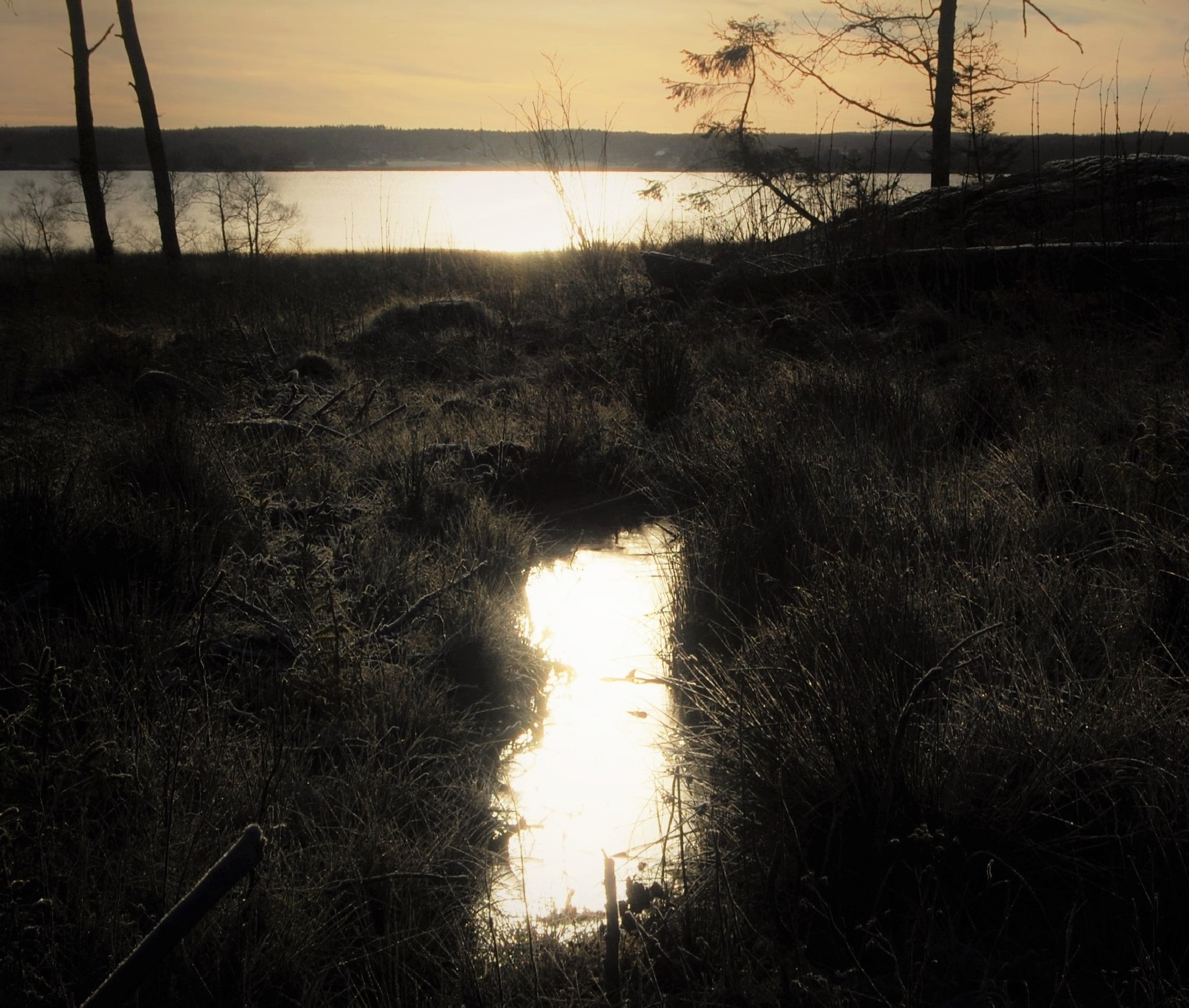 Reflexion of the afternoon sun by lillemor.ekstrom ek