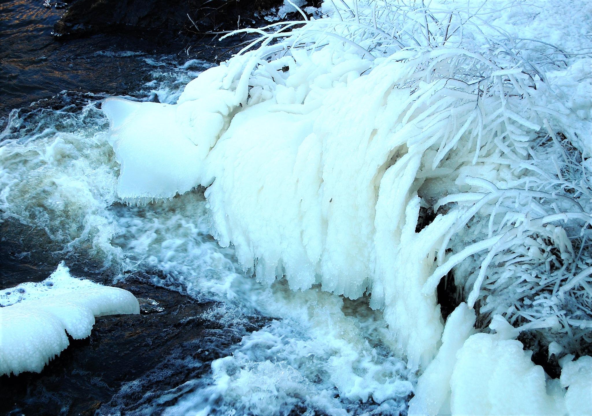 Walk along the stream in Norrköping by lillemor.ekstrom ek