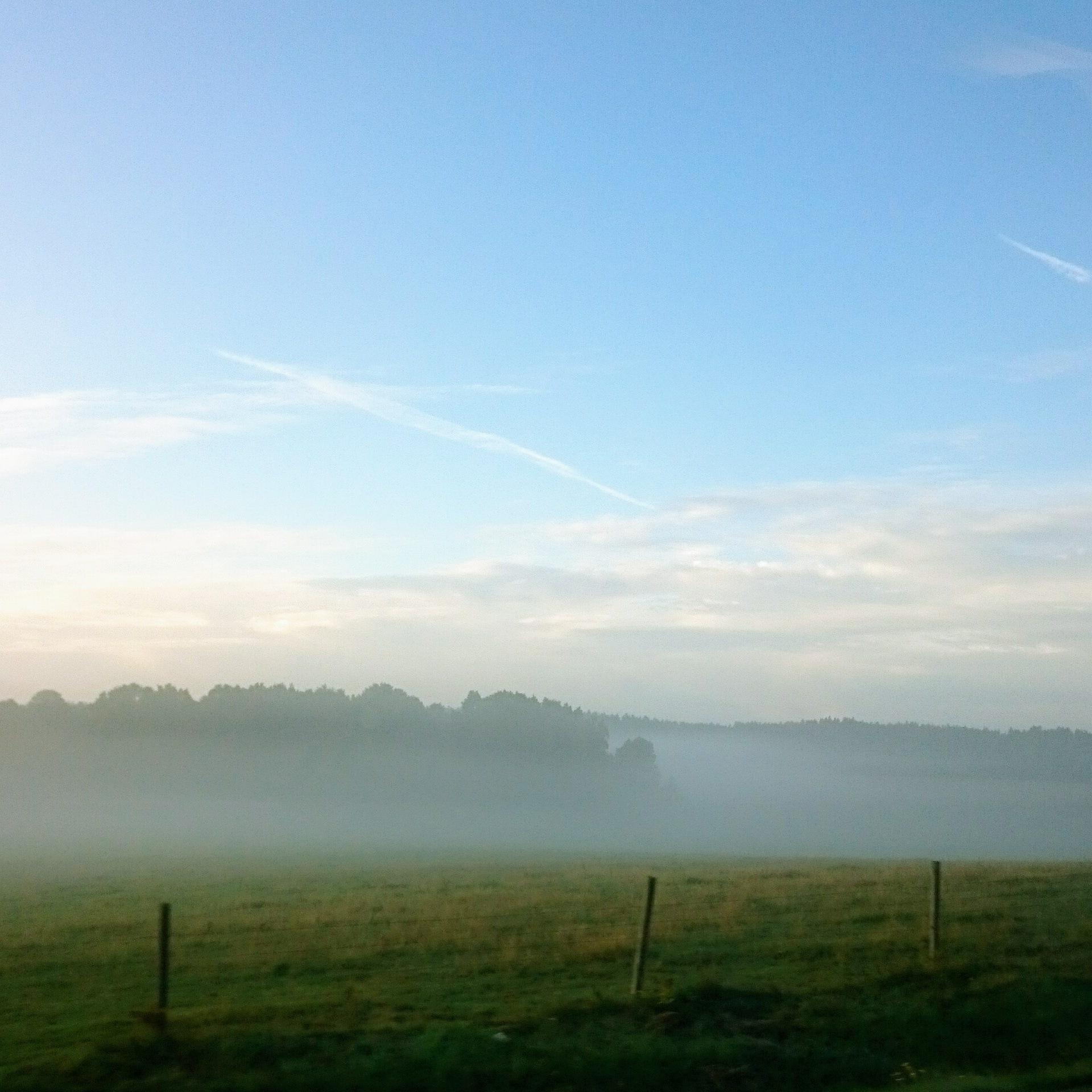 Morning fog by lillemor.ekstrom ek