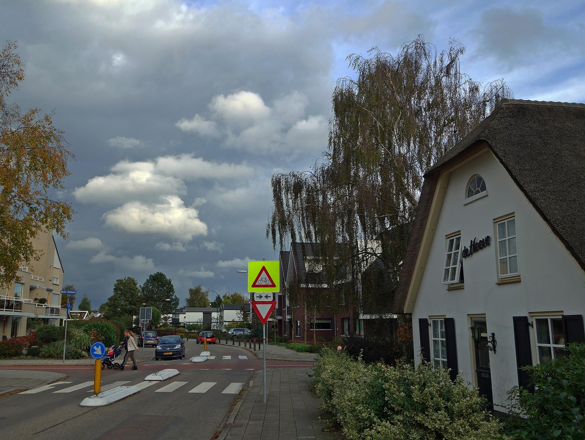 Cloudy day in Odijk by hugodejong35