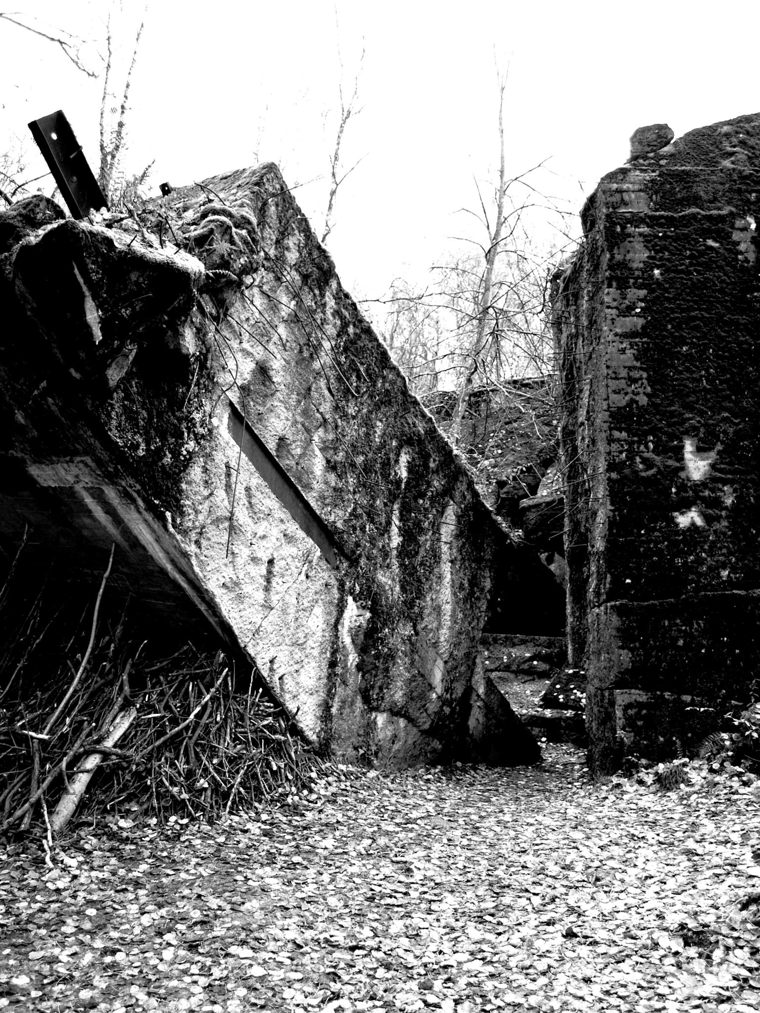 The Wolf's Lair (Hitler's Bunkers, Poland) by Rom Pasika