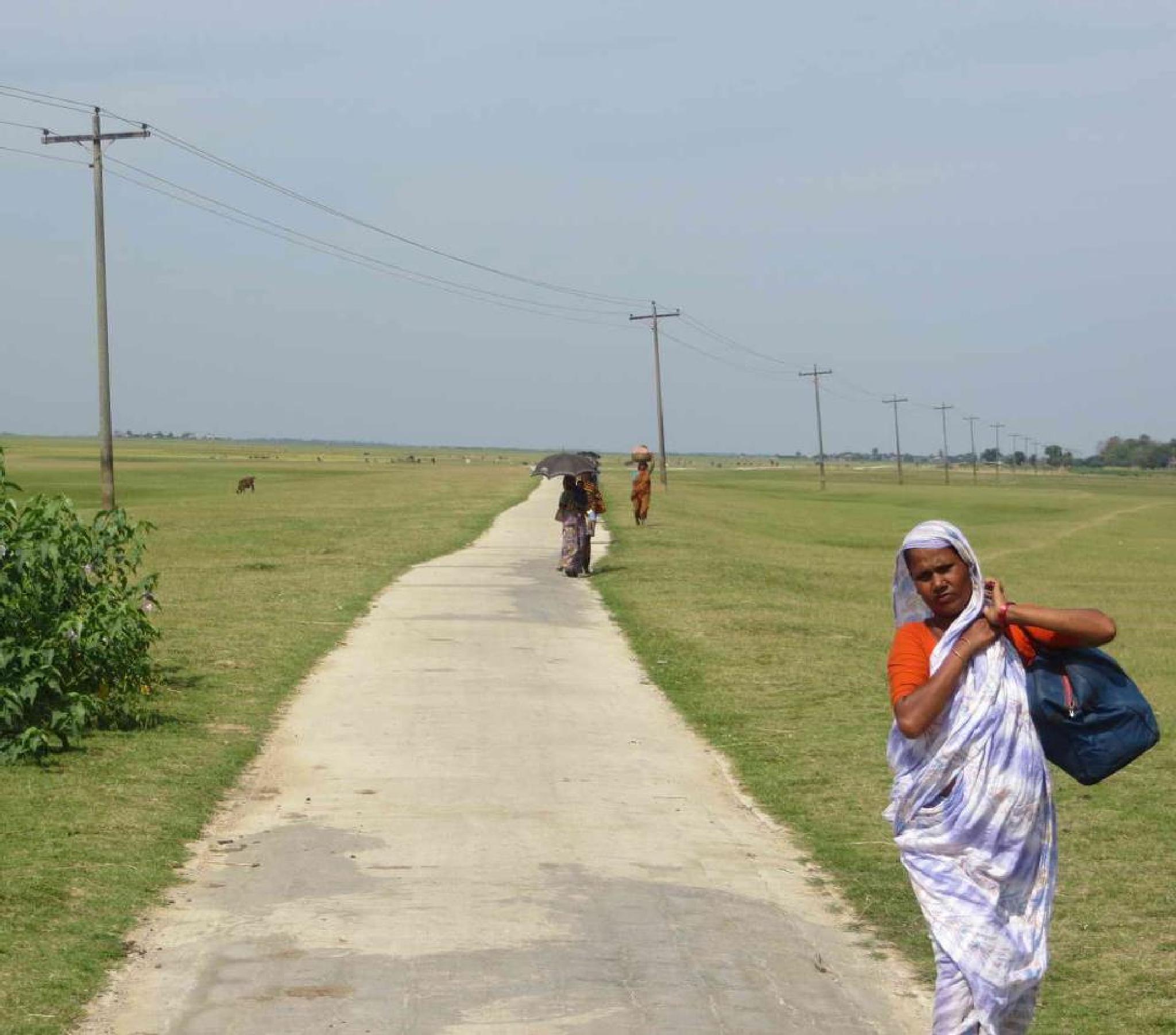 Long Road in Haor (Wetland)  by Reza Siddique