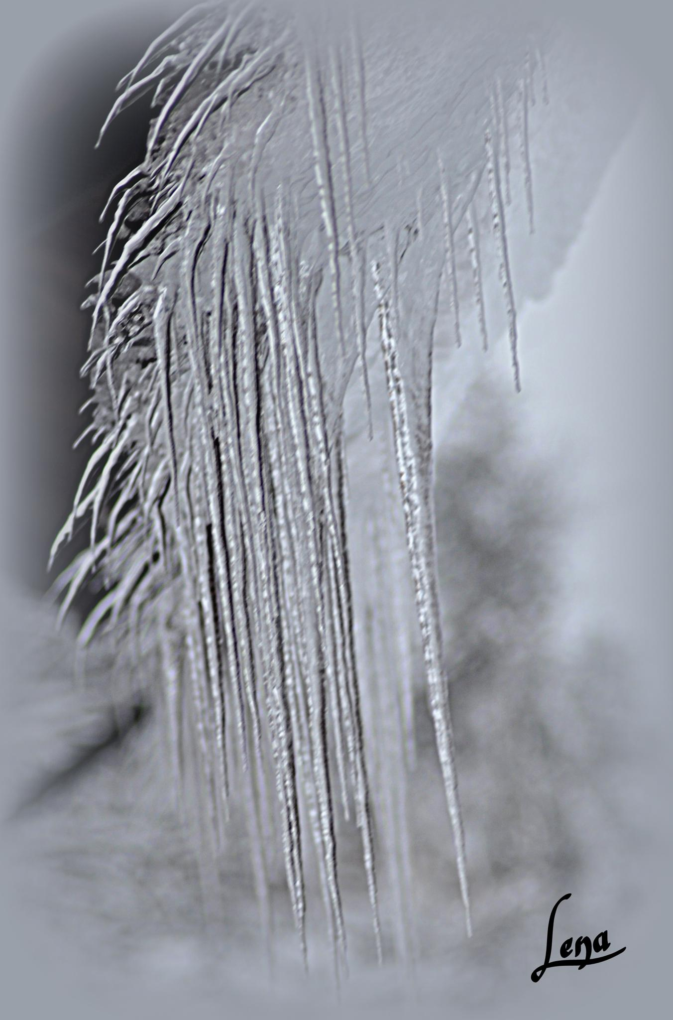 Ice  by Lena