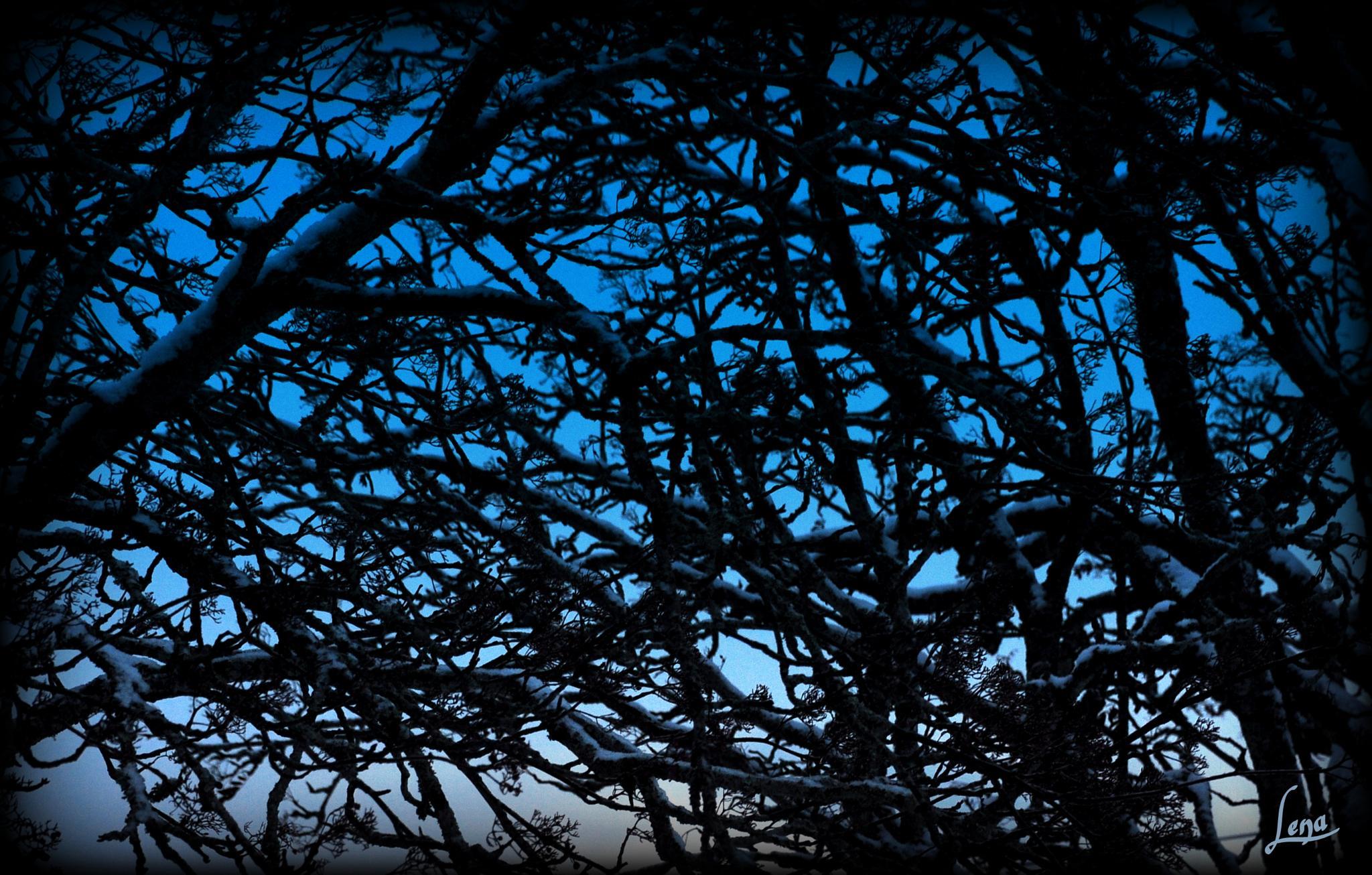 Blue sky by Lena