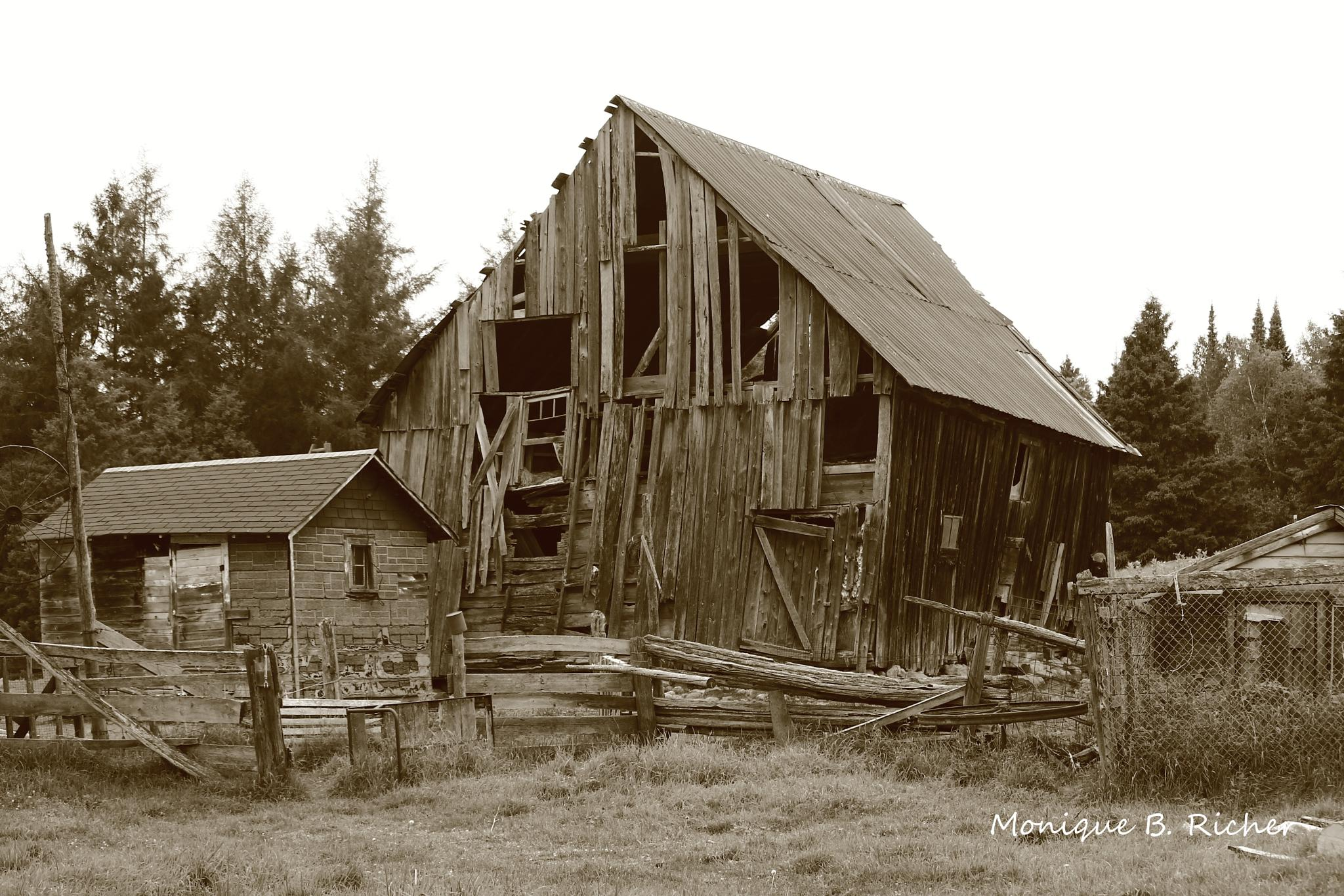Old Barn by ~Unieke Photography~